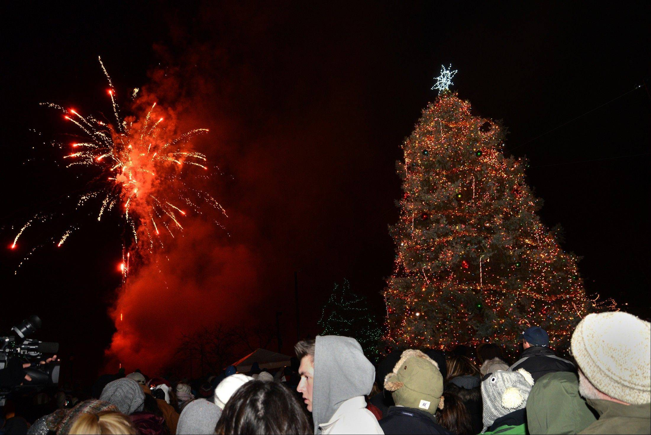 Fireworks capped off Elk Grove Village's tree-lighting ceremony on Friday night.