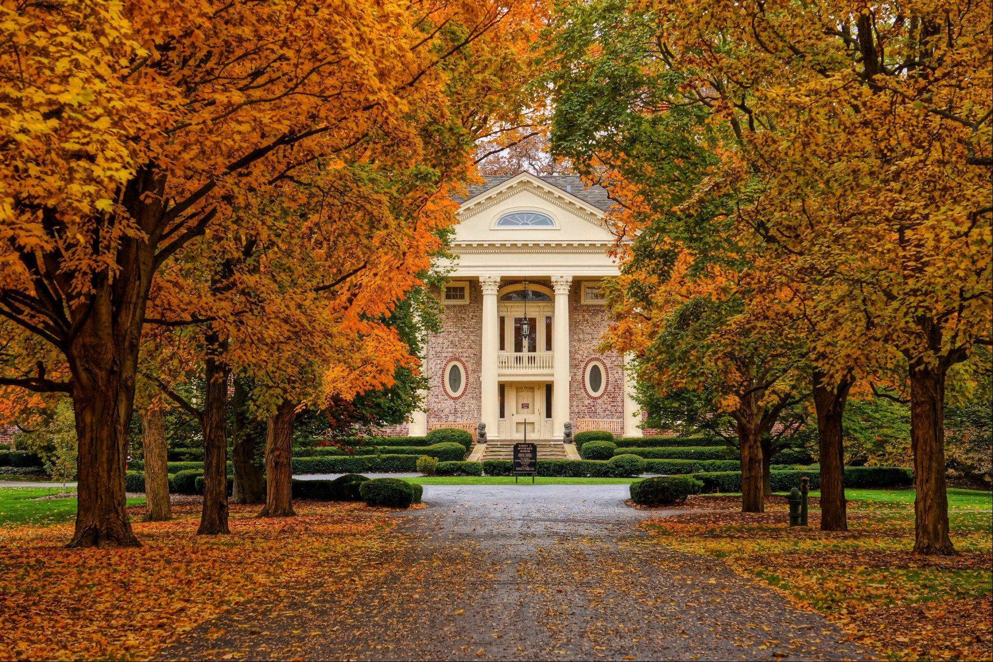 In early November, fall colors lined the walkway to the Robert R. McCormick Museum at Cantigny Park in Wheaton.