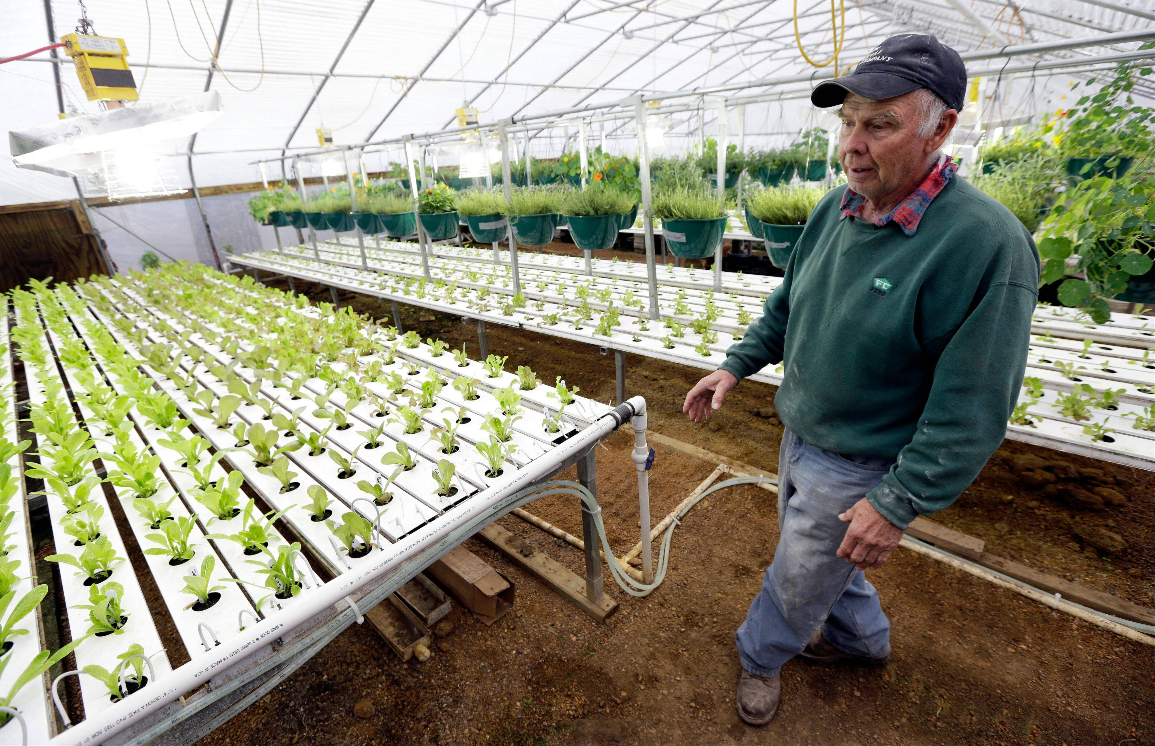 Earl Hafner talks last week about growing vegetables in his aquaponics greenhouse on his farm, near Panora, Iowa.