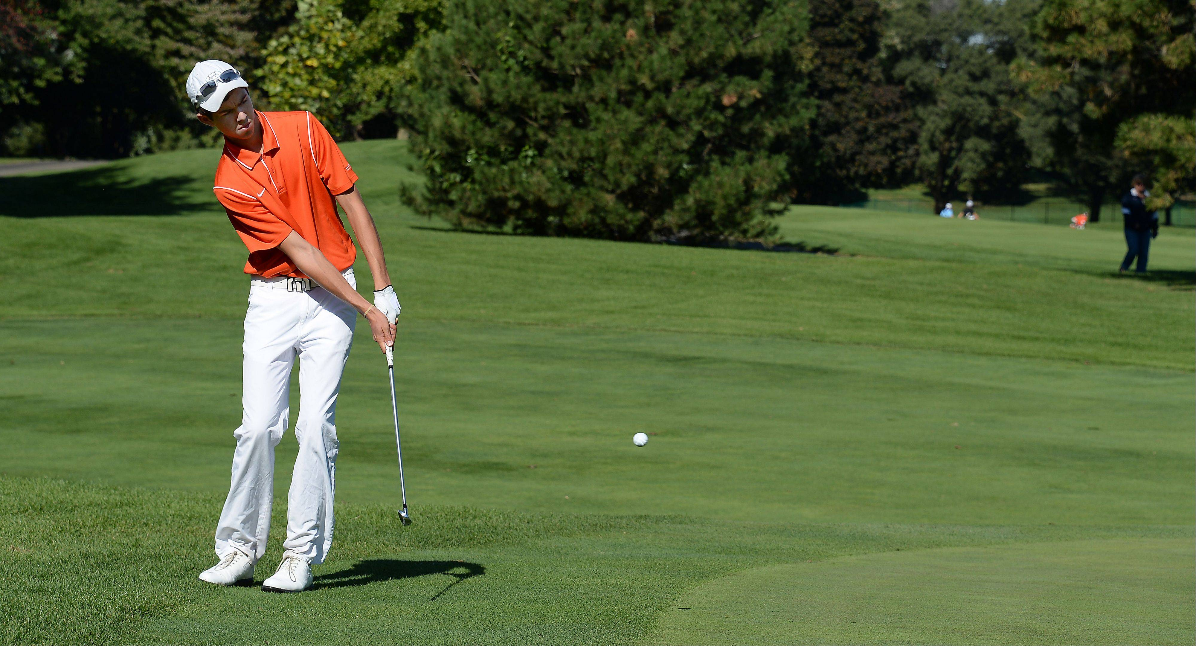 Hersey senior Kenny Mleko, who will play at Loyola next year, chips up during the Mid-Suburban League meet at Schaumburg Golf Club.