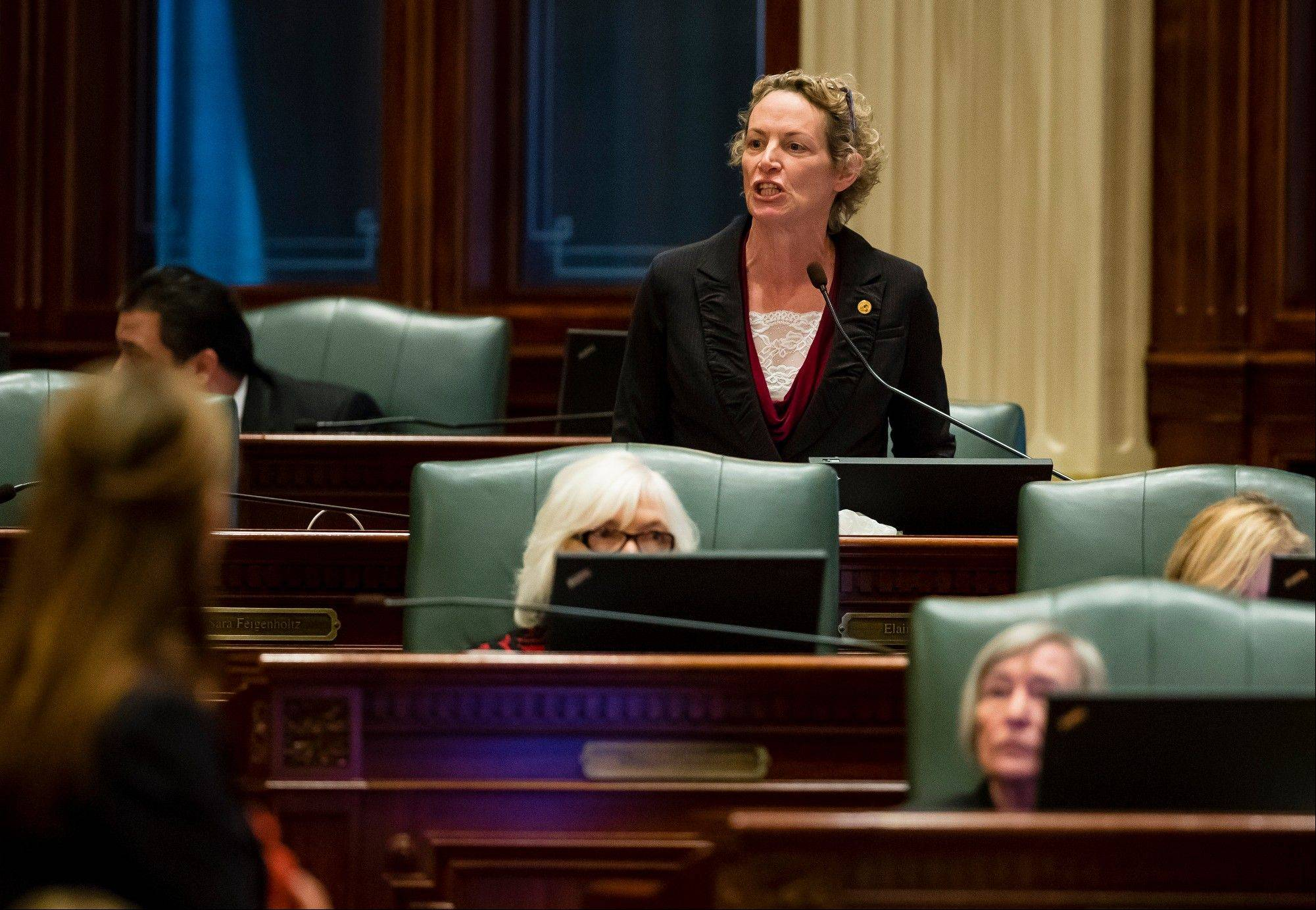 Rep. Elaine Nekritz, a Northbrook Democrat, speaks Tuesday during Illinois House debate over pension cuts. The bill passed both the House and the Senate and Gov. Pat Quinn says he'll sign it.