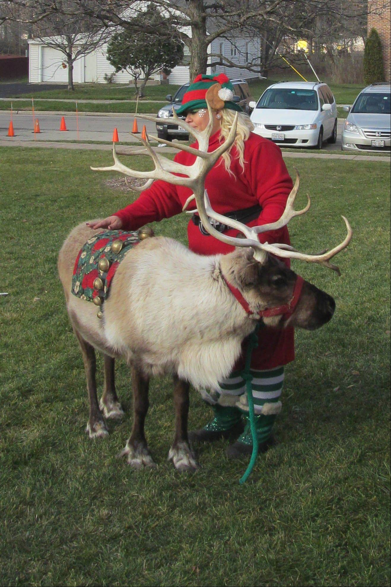 Lisle's Once Upon a Christmas celebration features live reindeer.