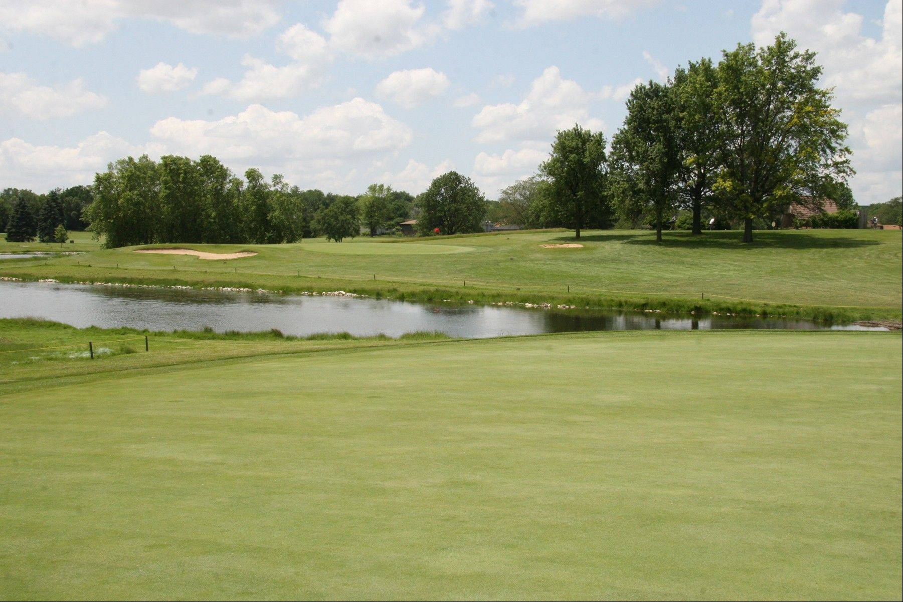 Green Meadows Golf Course in Westmont could be improved as part of a proposed partnership the DuPage County Forest Preserve District might form with other golf organizations.