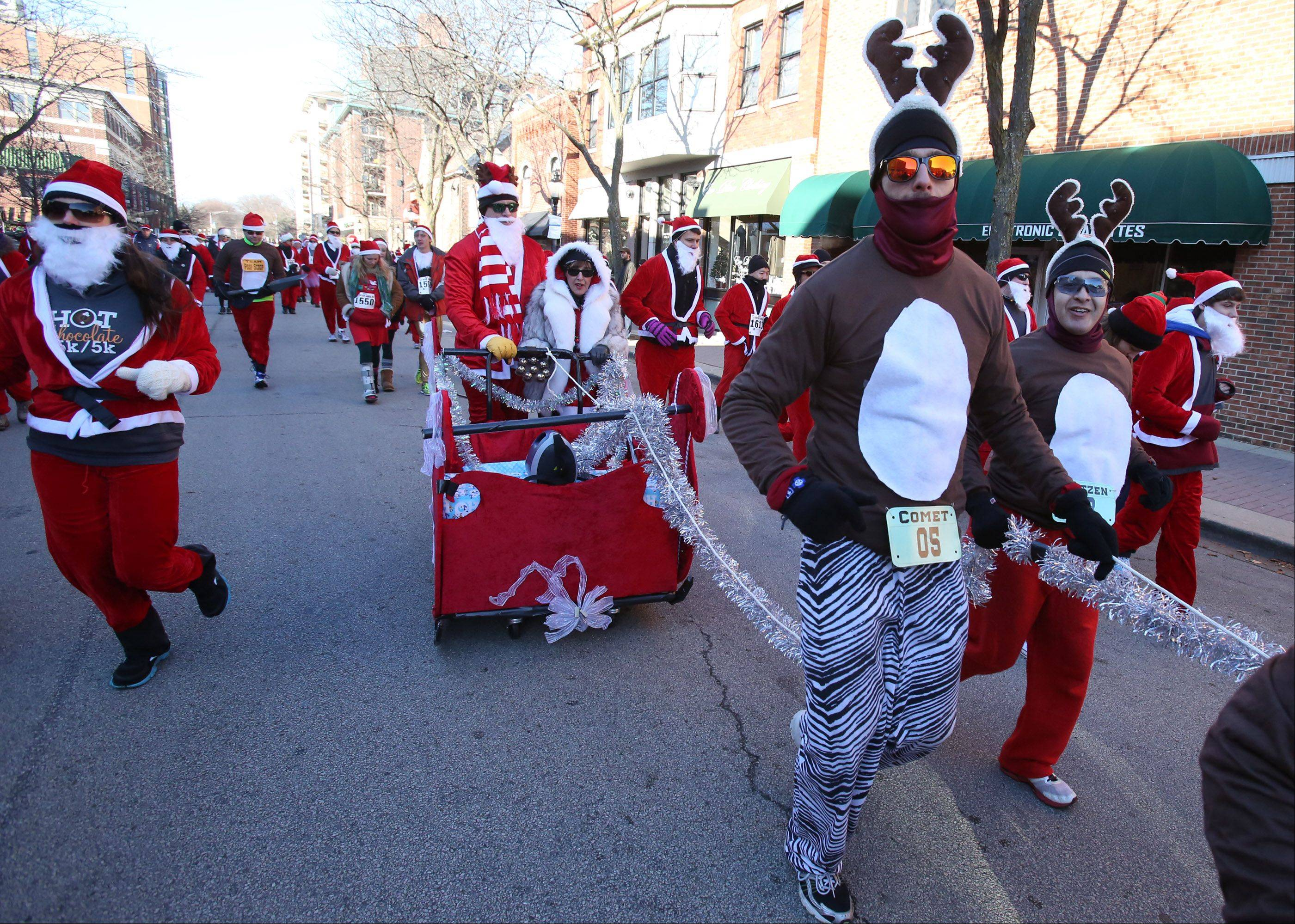 Runners dressed as reindeer pull a sled at the start of the Rotary Santa Run on Saturday in Arlington Heights.
