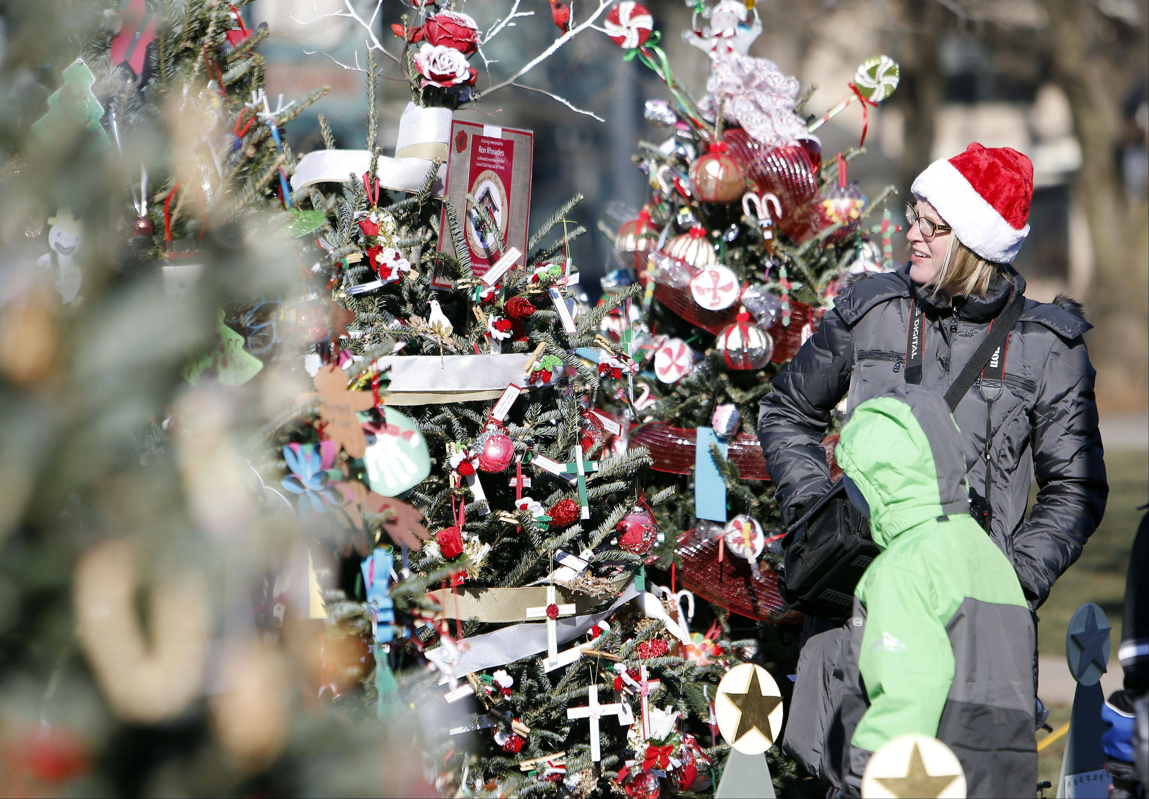 Sarah Schiltz of Carpentersville tries to find her children's ornaments on the Immanuel Lutheran Christmas tree during the Dickens in Dundee festival at Grafelman Park Saturday in West Dundee.