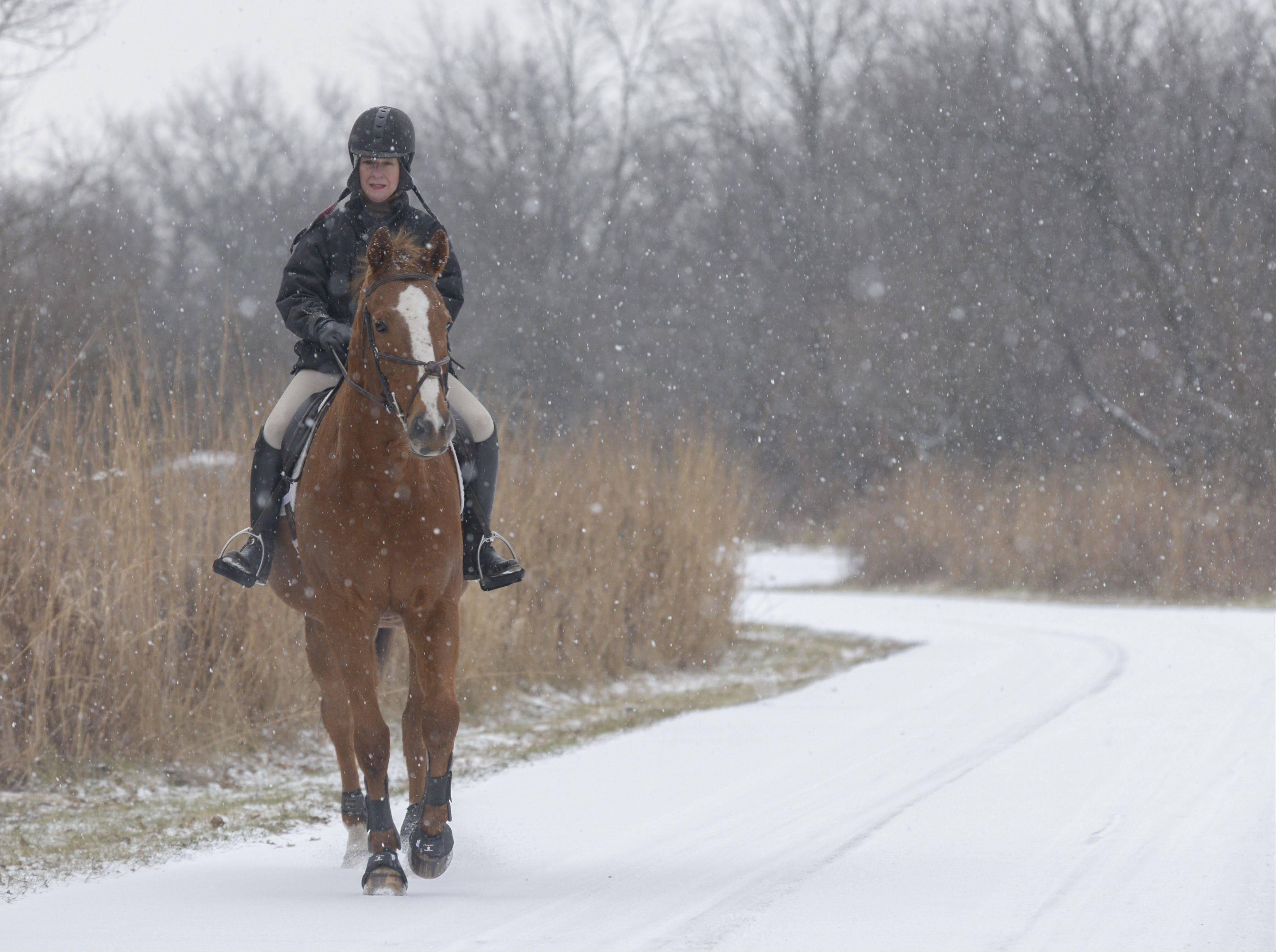 "Authorities say Sunday's snow brought hazardous driving conditions, but all was safe for Joanne Westwater of Wheaton as she stayed off the roadways to take a ride instead on ""Ray"" at West DuPage Woods Forest Preserve in West Chicago."