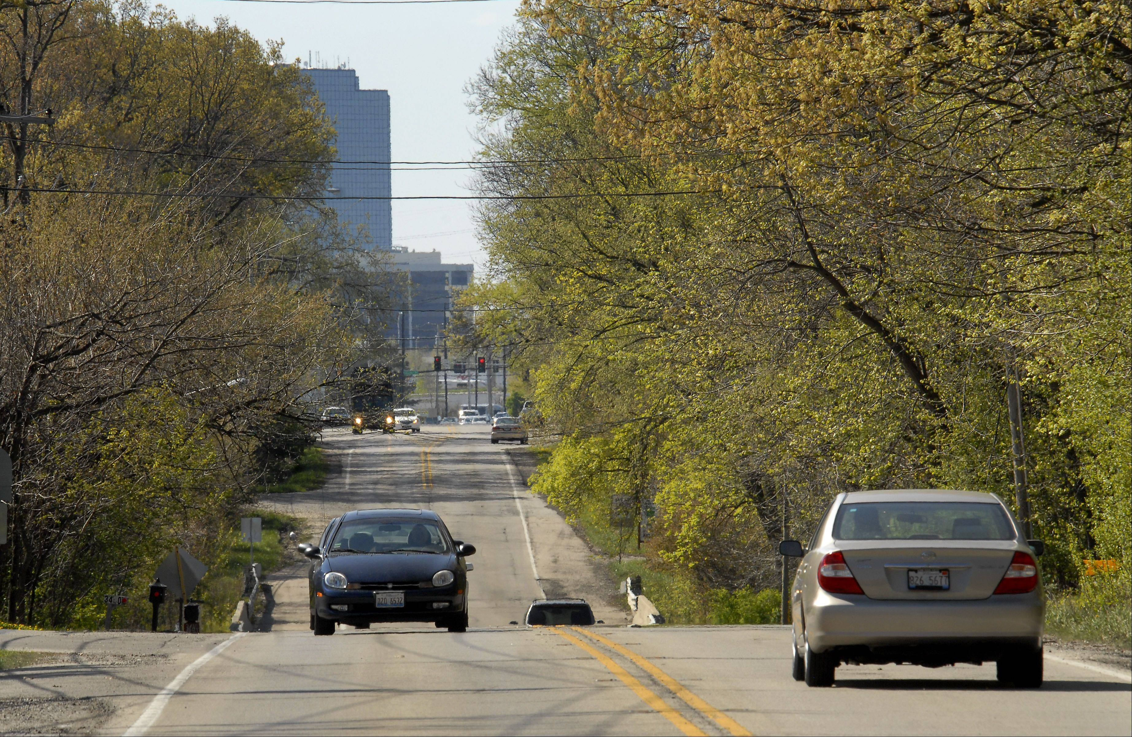 Discussions and studies continue on whether to widened the tree-lined stretch of Meacham Road in Rolling Meadows and Schaumburg to three lanes.