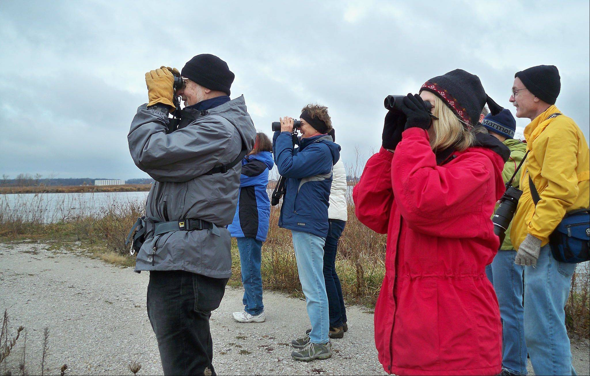 Naturalist Jack Pomatto leads a group of Kane County Certified Naturalists on a birding class at Fermilab in Batavia. From left are graduates Kim Haag, Barb McKittrick and student Alan Roberston.