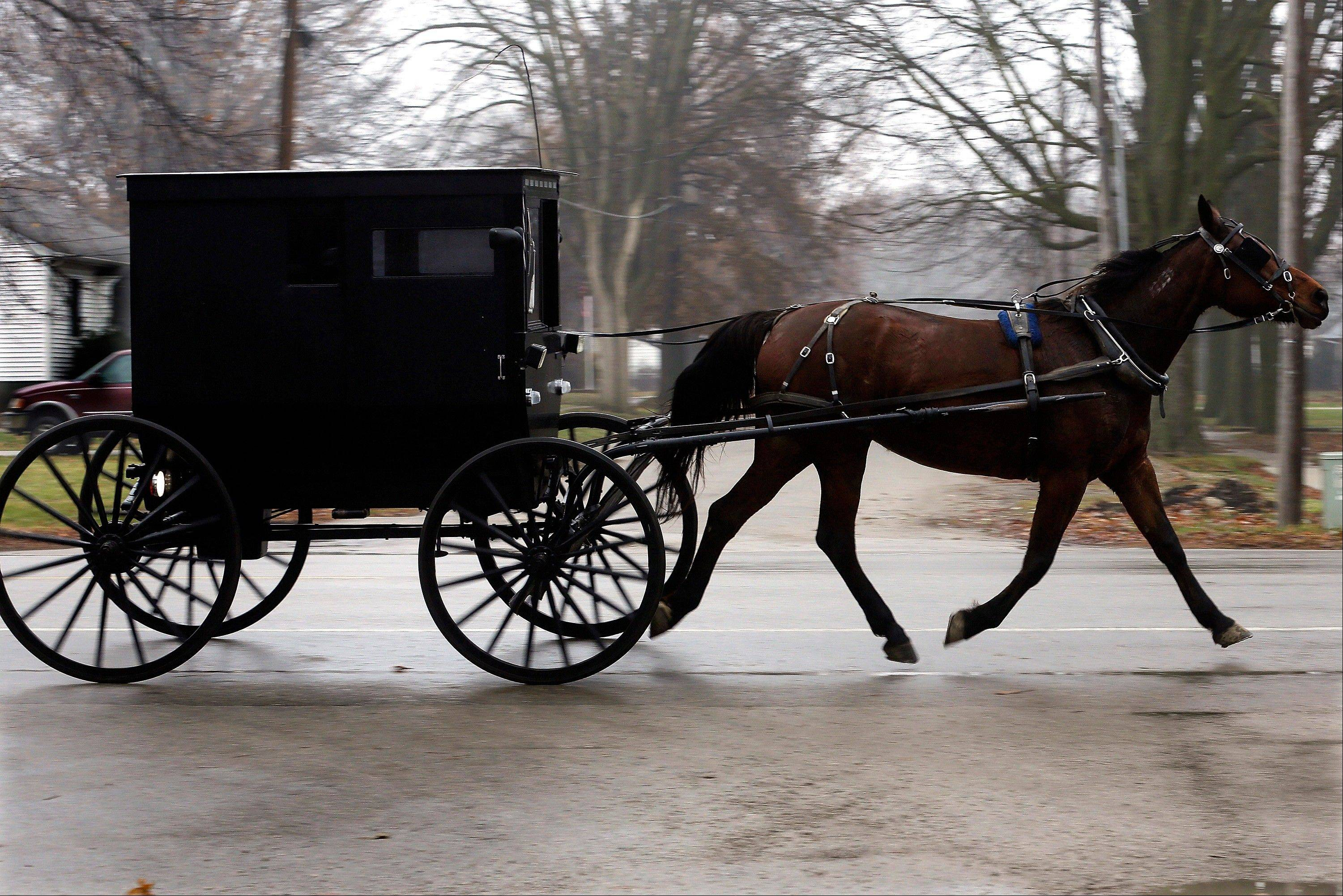 An Amish buggy and horse travels down a road in Arthur, Ill., in Douglas County, which has the second highest percentage of Illinoisans without health insurance of all the counties in Illinois.