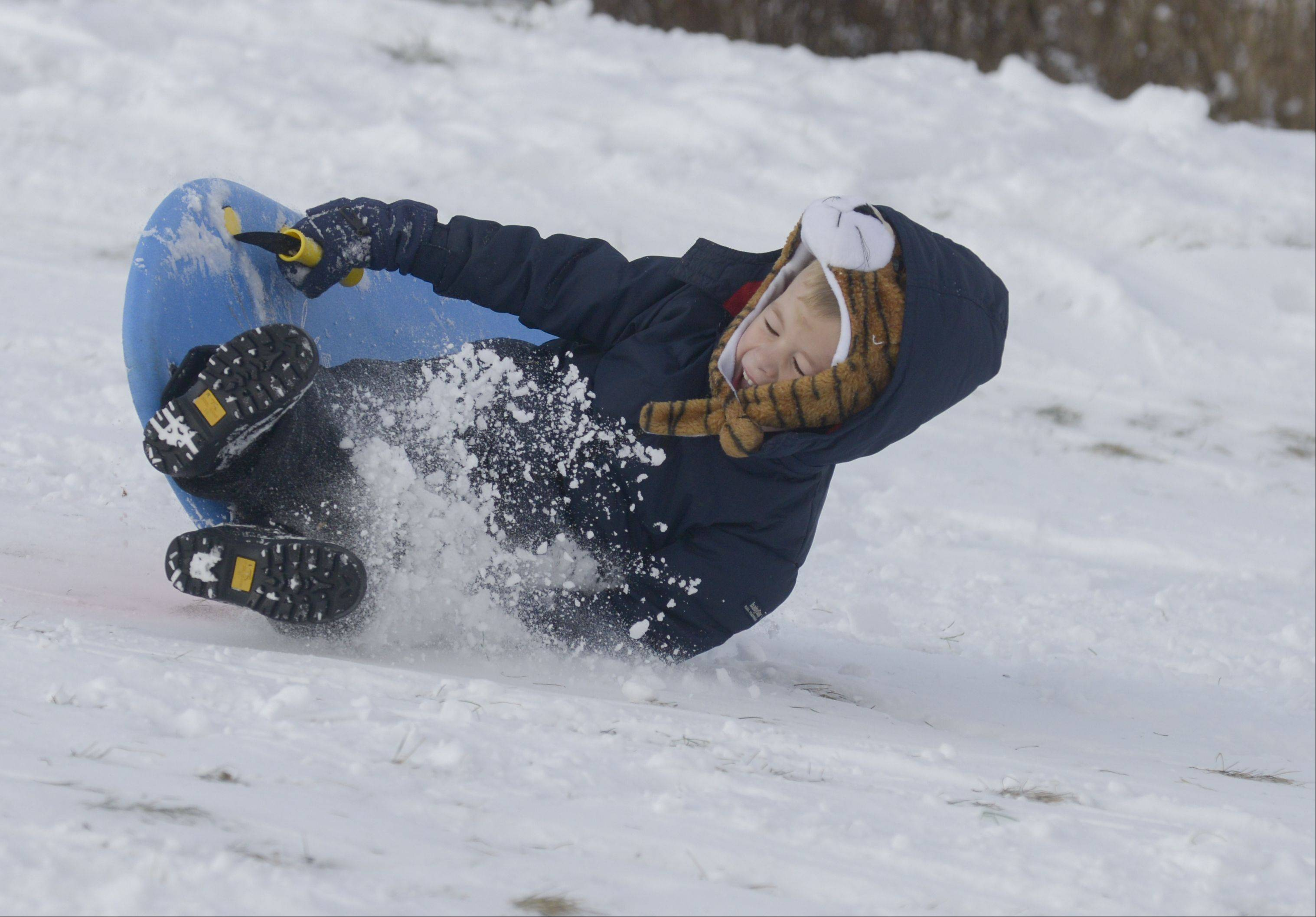 Neal Williams, 4, wipes out as he sleds down the hill at Wheaton's Northside Park. He and his siblings are home schooled so they are able to be flexible and take advantage of the fresh snow for some fun.