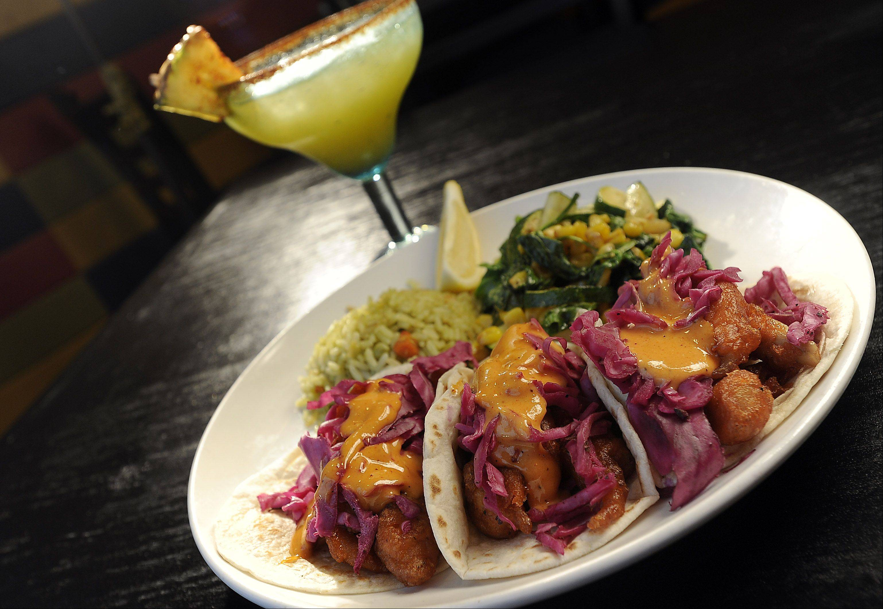 Beer-battered tacos are served with a chipotle-spiked cream sauce at Mia's Cantina in Mount Prospect.