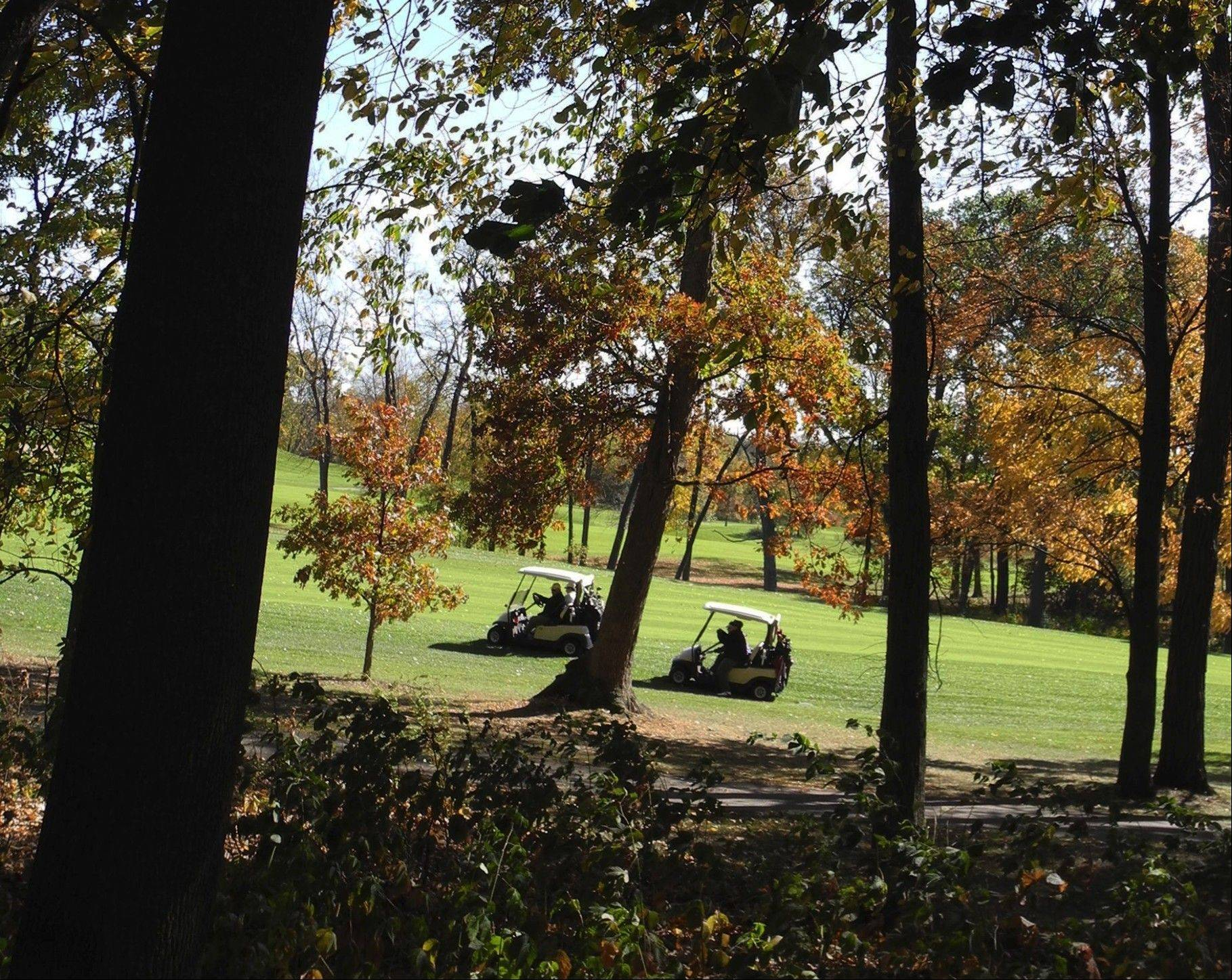 Mary Lemak of Batavia shot this fall photo of a foursome playing at Cantigny Golf.