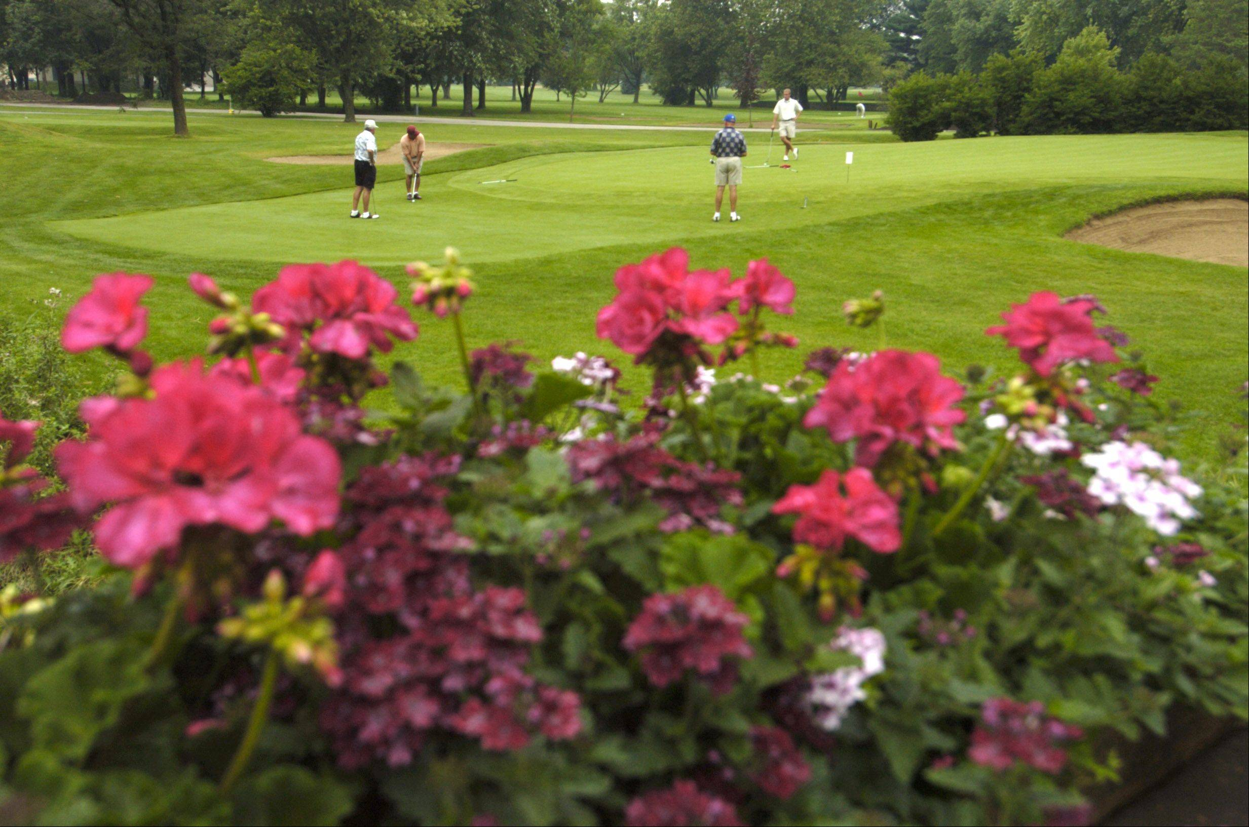 The Mount Prospect Park District is back to the drawing board with a key part of its $6 million plan to renovate the Mount Prospect Golf Club. Village officials Tuesday night failed to approve the district�s request for a zoning variance that would allow it to install a 75-foot-tall net as part of a new driving range.