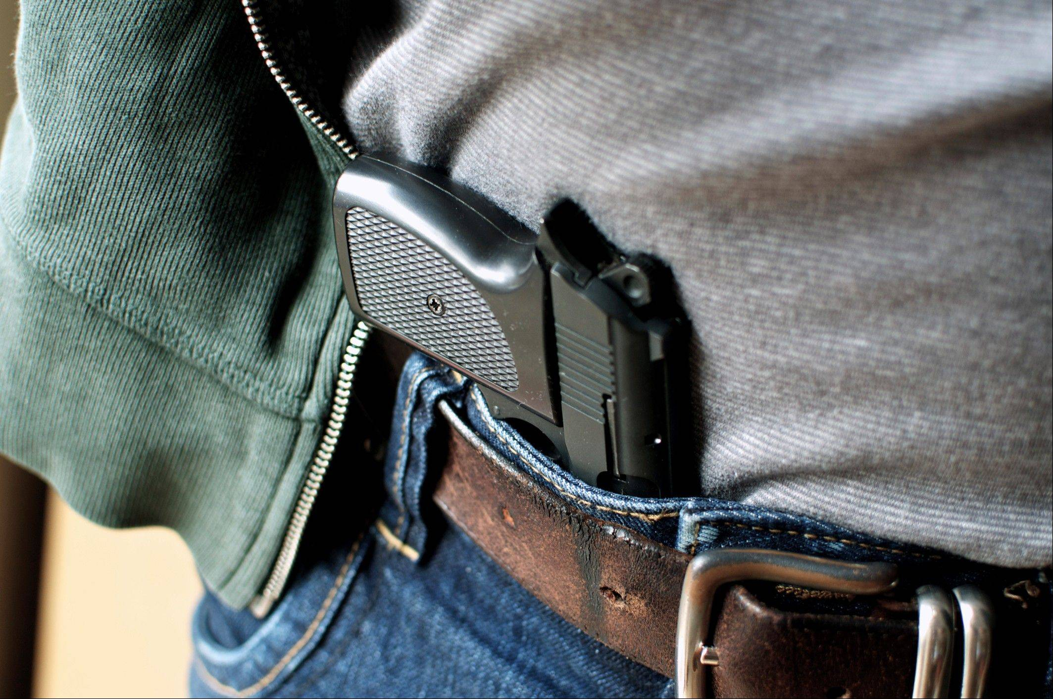 The Illinois State Police expect 400,000 applications for concealed carry permits.