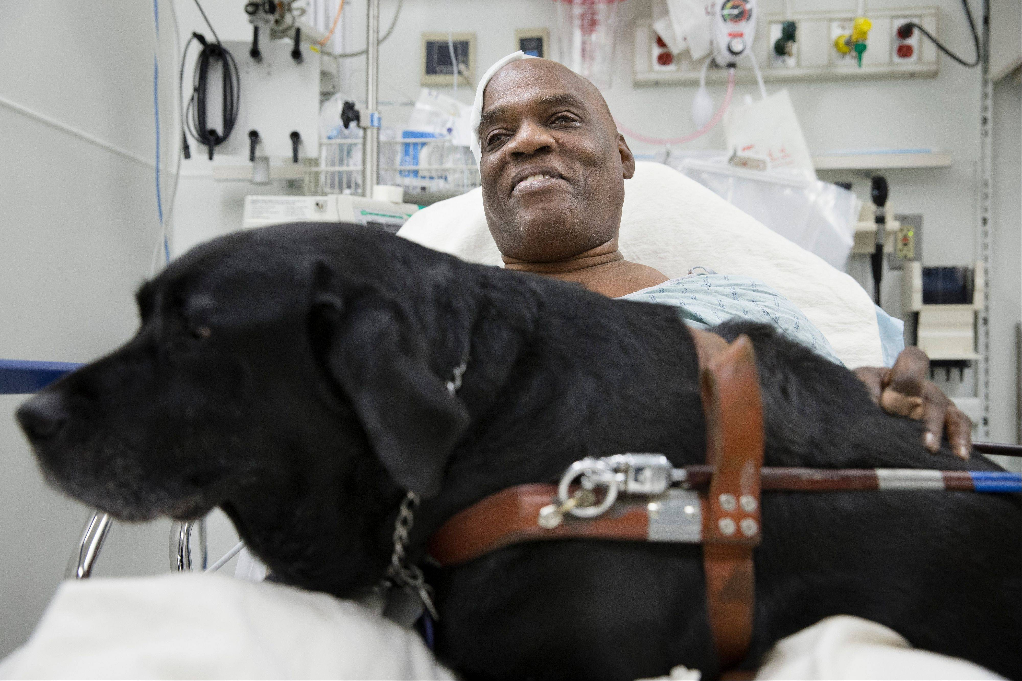 Cecil Williams smiles Tuesday as he pets guide dog Orlando in his hospital bed following a fall onto subway tracks from the platform at 145th Street in New York. The blind 61-year-old Williams says he fainted while holding onto his black labrador who tried to save him from falling. Both escaped without serious injury.