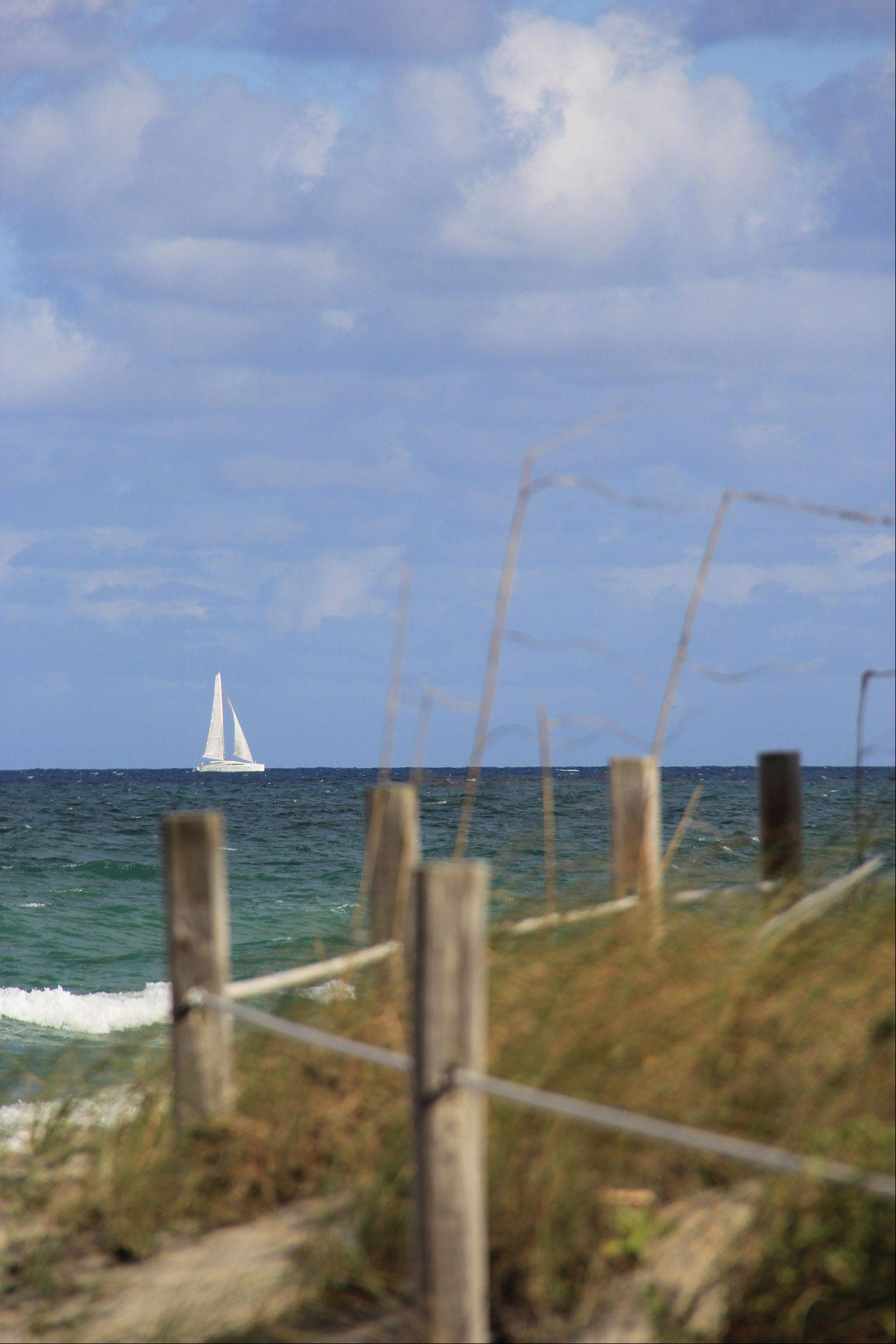 A sailboat on the Atlantic Ocean passes a bed of sea oats off Hollywood Beach, Florida in November.