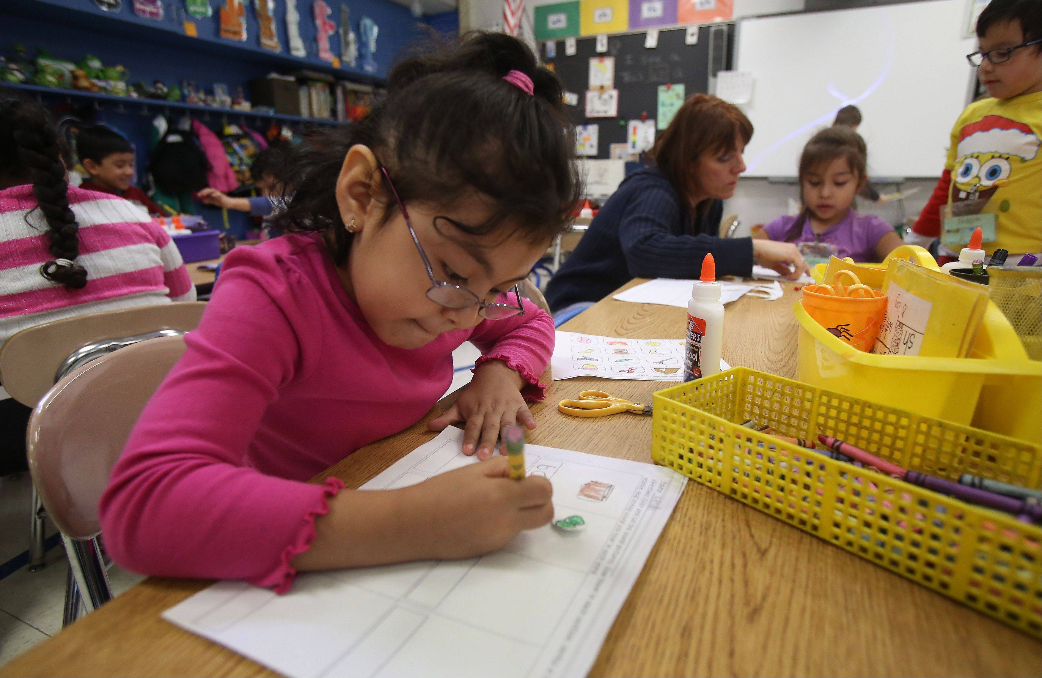 Kindergartner Leslie Alvarez works on words and sentences in Annette McCafferty's dual-language class at Woodland Primary School in Gages Lake.