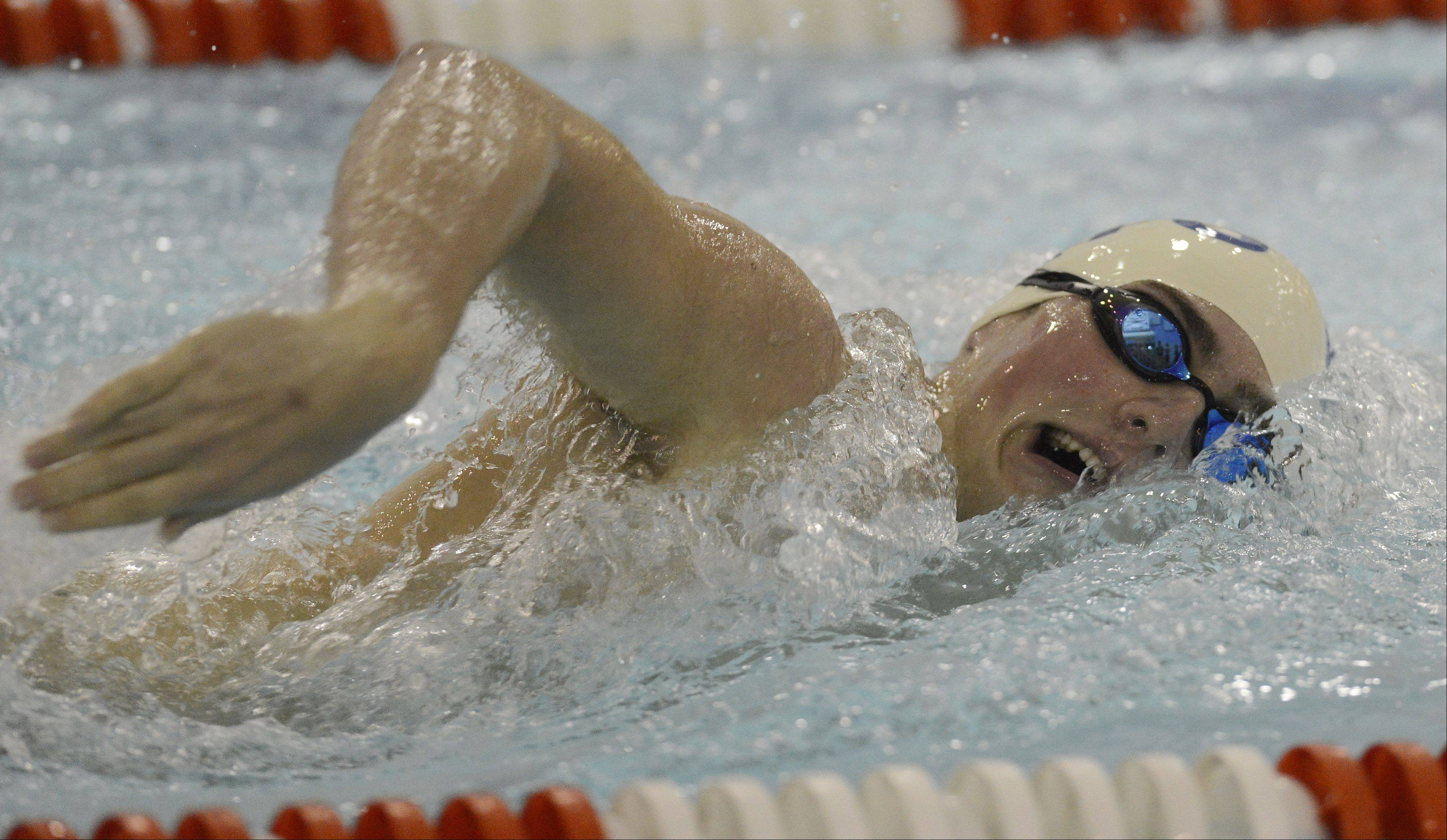 Wheeling's Bryce Maczko swims the 200-yard freestyle during Thursday's meet in Arlington Heights.