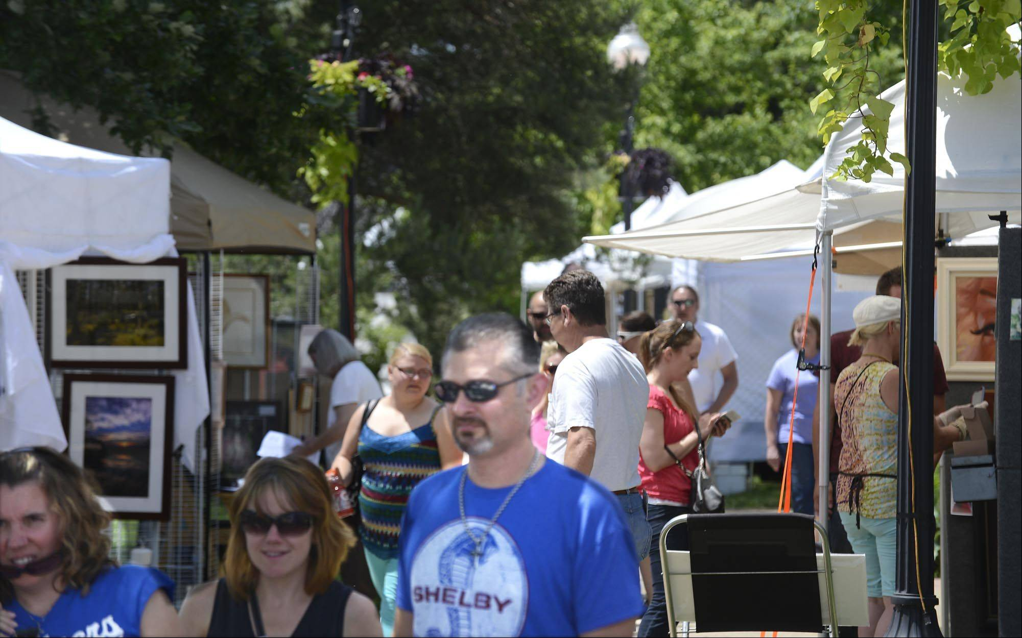 Algonquin leaders have put out an early call for artists to sign up for the seventh annual Art on the Fox festival. Village leaders are pushing early registration for the June fest to see if artists are interested in applying early and securing a discount to do so.