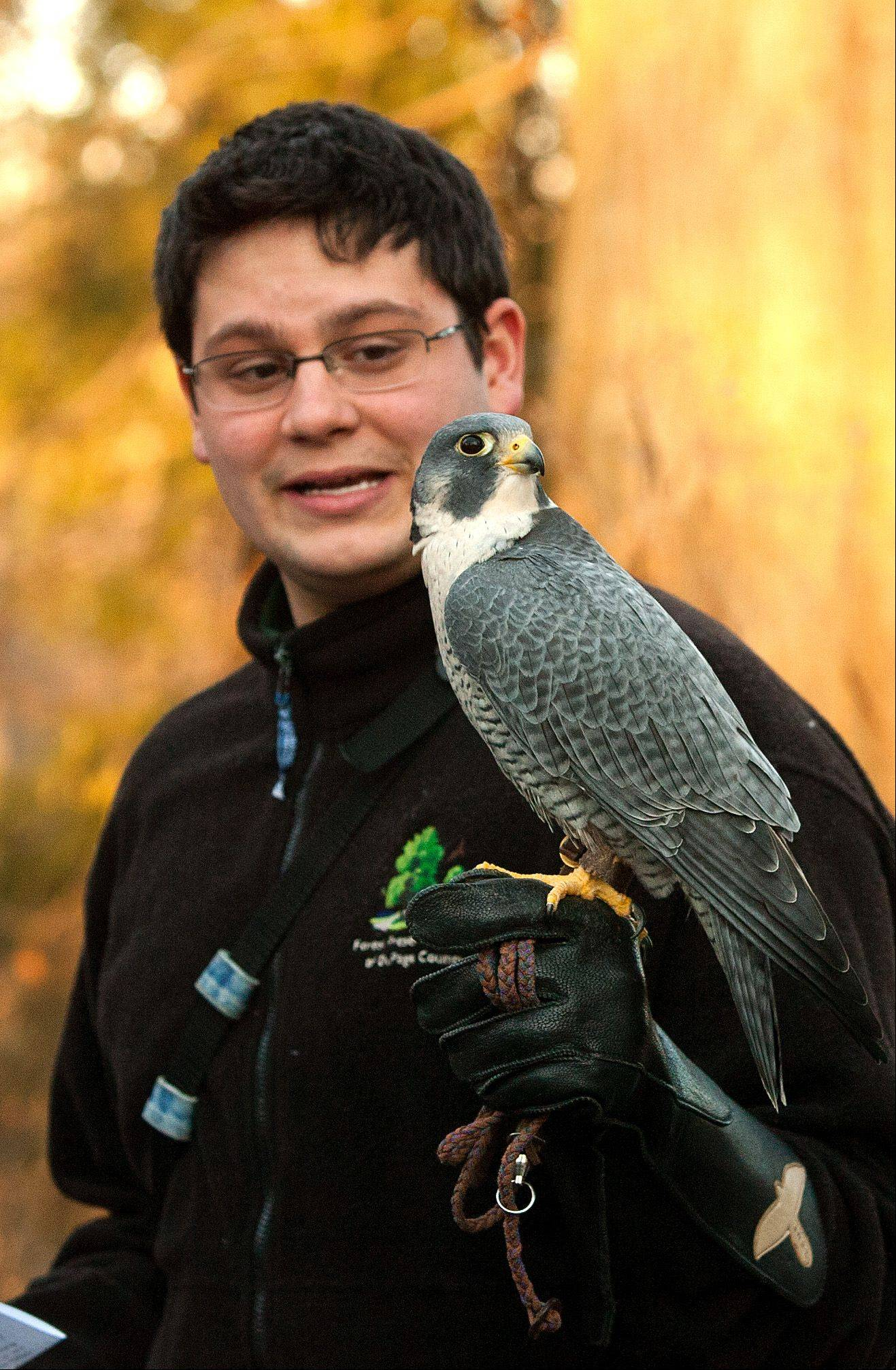 Jacob Shurba talks about peregrine falcons Saturday during a program at the Willowbrook Wildlife Center commemorating the 40th anniversary of the signing of the Endangered Species Act.