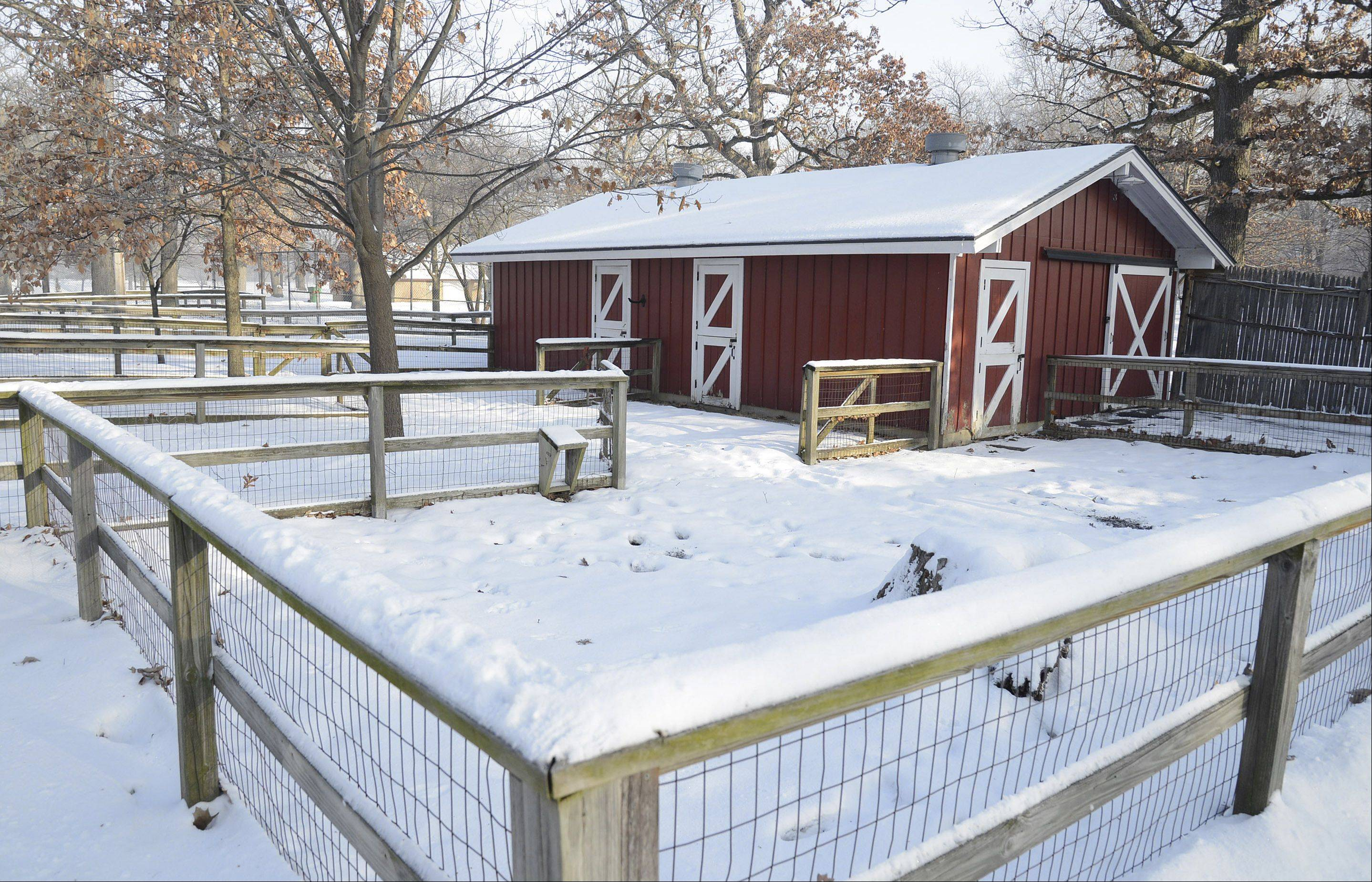 The Friends of Lords Park Zoo group in Elgin is planning to bring back farm animals this summer after they were cut from the budget a few years ago. This barn previously housed pigs, goats, calves and llamas.