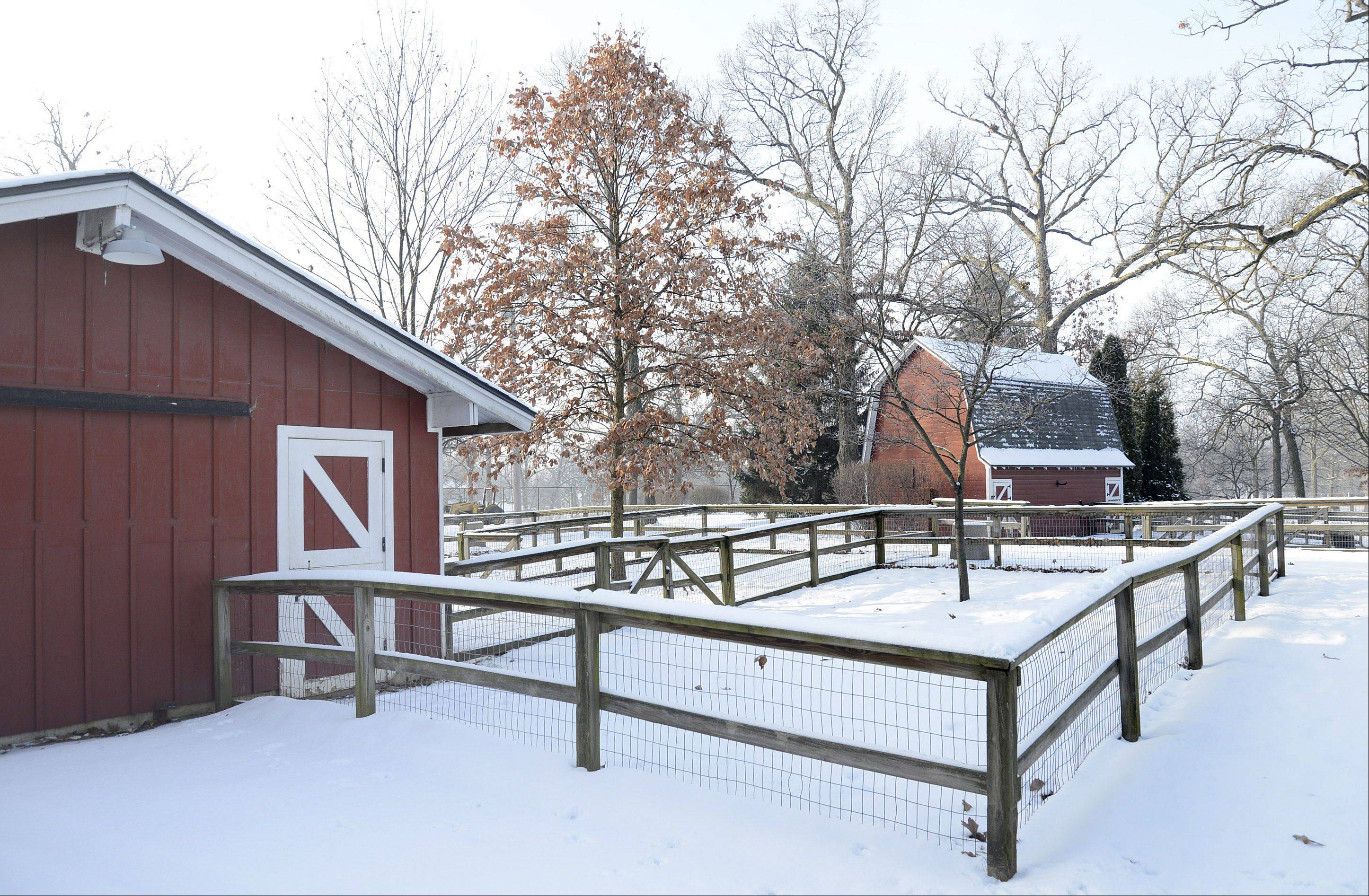 The barn on the left previously housed pigs, goats, calves and llamas. The barn on the right kept sheep and a donkey.