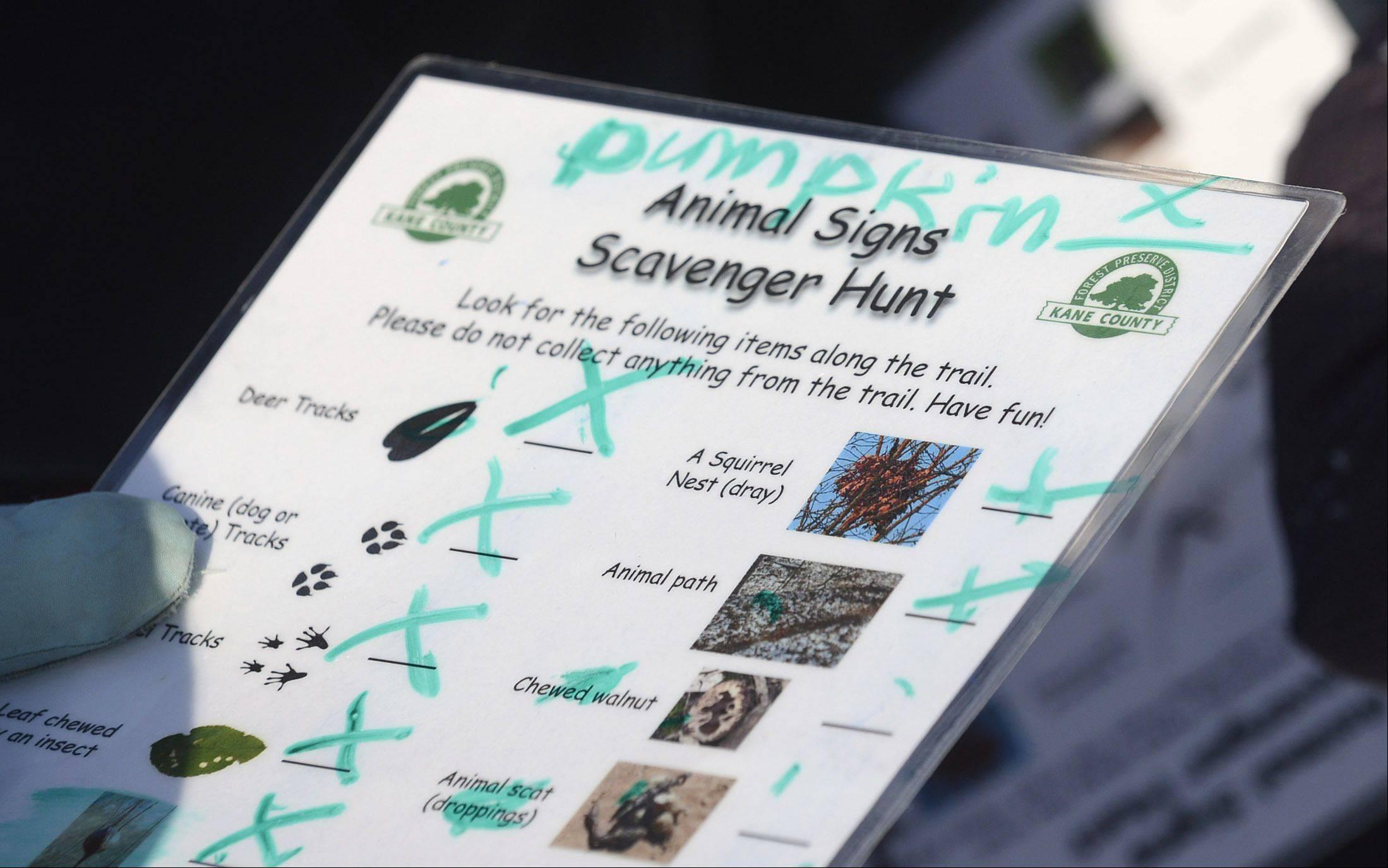 Items on the list for the scavenger hunt at Bliss Woods Forest Preserve in Sugar Grove. The Kane County forest preserve district presented the family program.