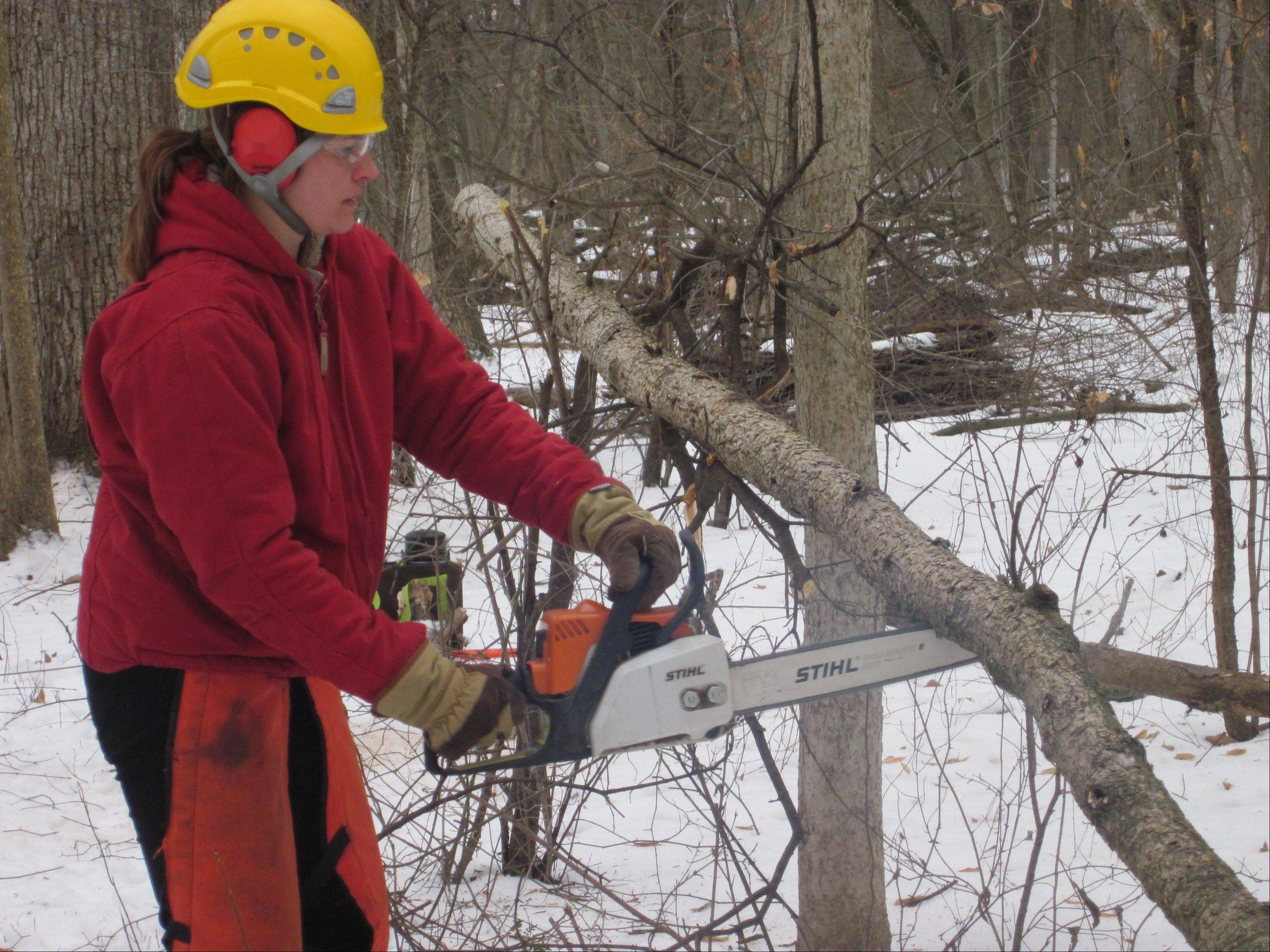 Heather Decker, site steward for Wilmot Woods Forest Preserve near Libertyville, uses a chain saw to cut invasive buckthorn Sunday during a restoration work day. She said winter is the best time to remove the invasive species because other vegetation is dormant.