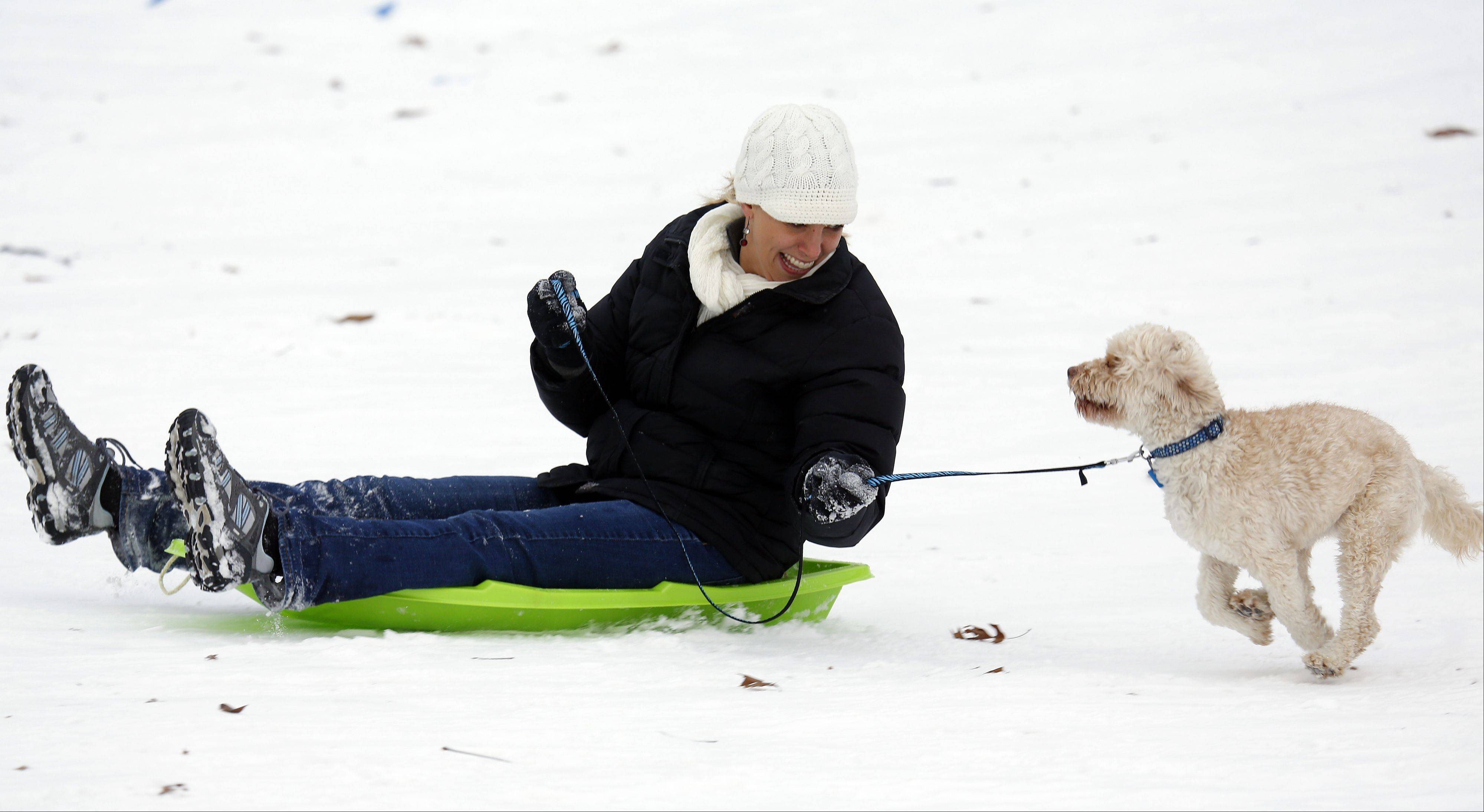 Bethany Donaldson, of Elgin, races down the hill with her dog Mandie, a golden doodle, while sledding at Wing Park in Elgin Thursday.