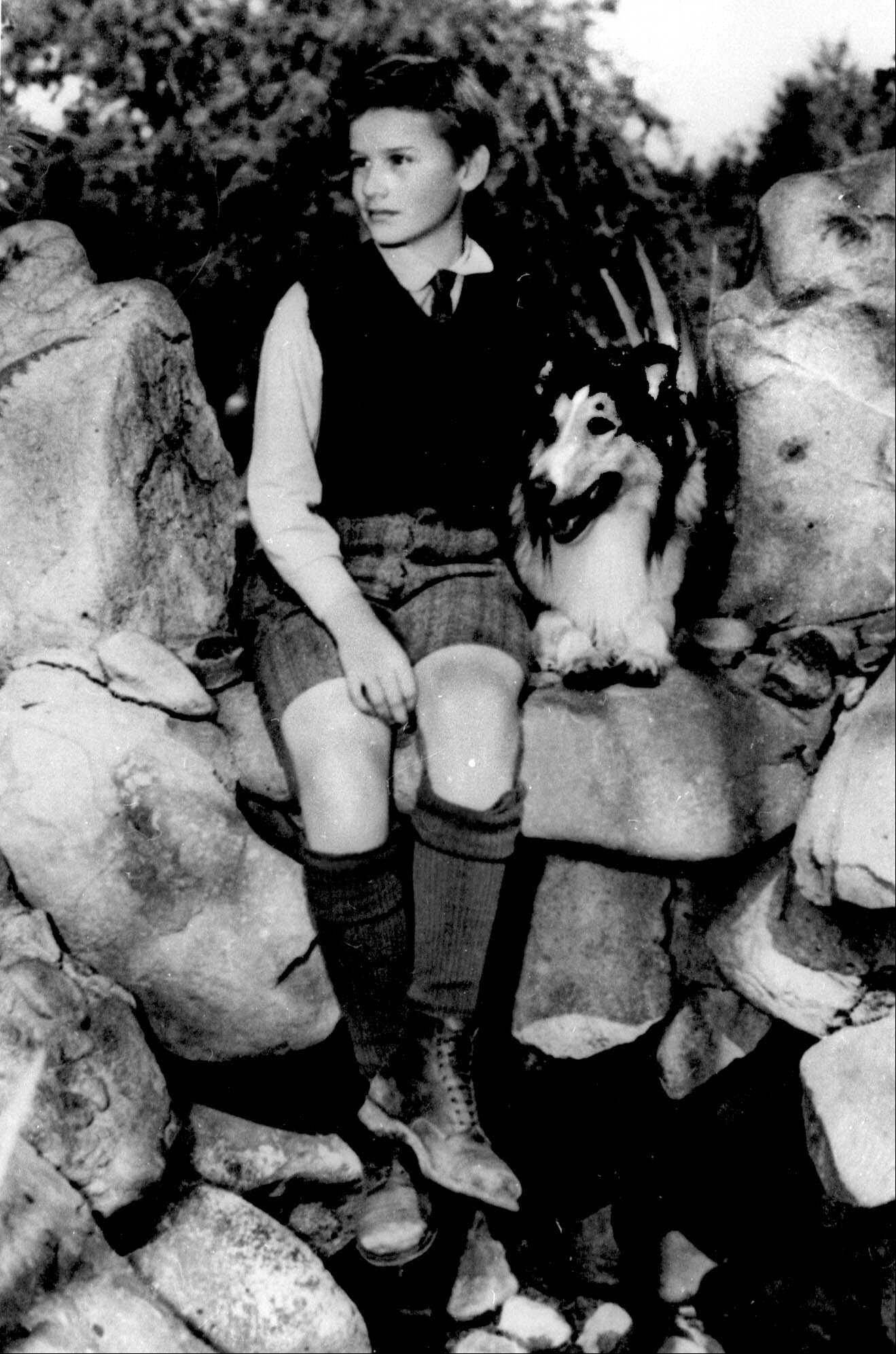 "Young Roddy McDowall sits besides a future collie star in ""Lassie Come Home,"" one of many canine movies in Dann & Raymond's salute to the great dog movies."