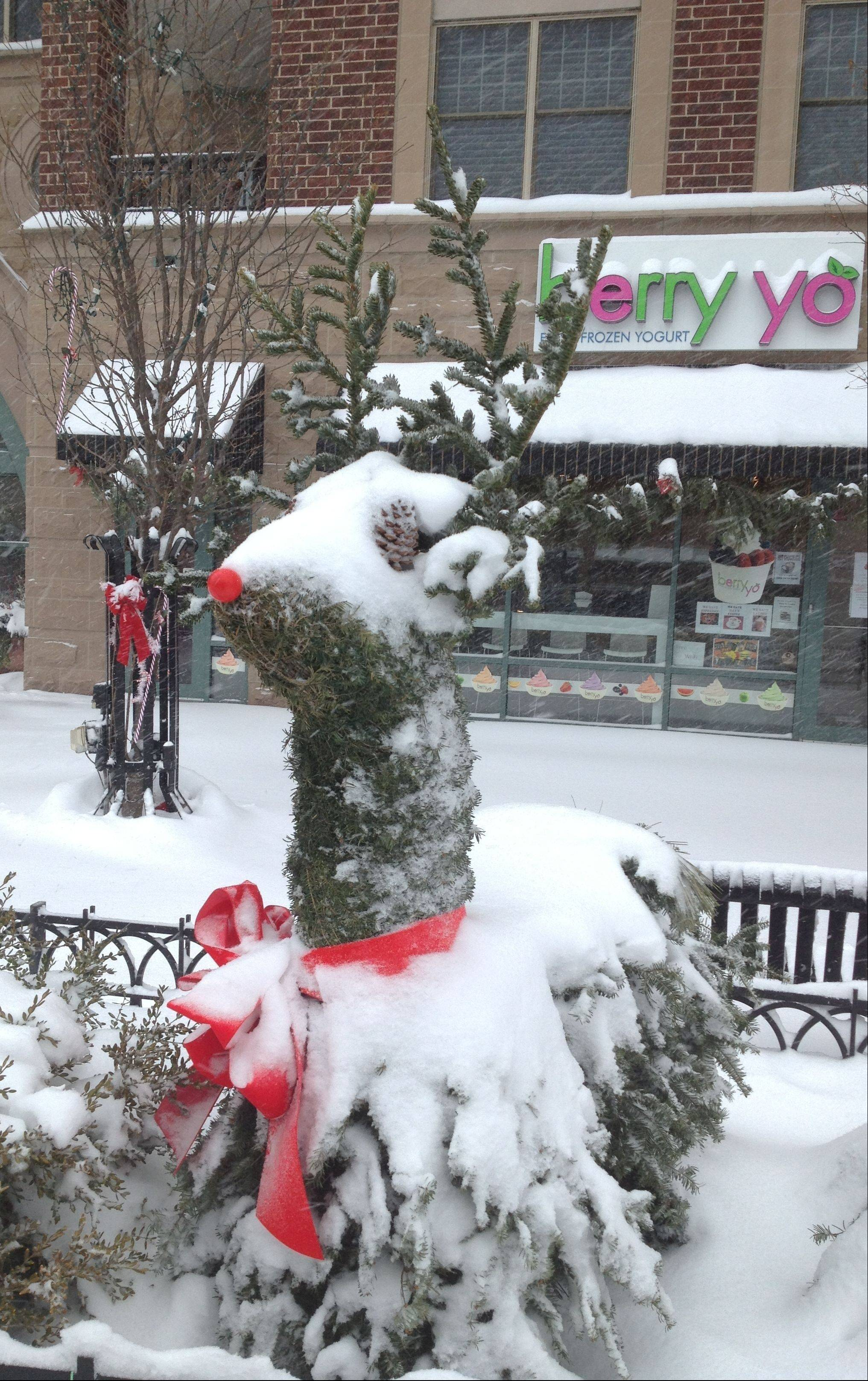 Snow covers one of the sculpted reindeer Wednesday on Vail Street in downtown Arlington Heights.