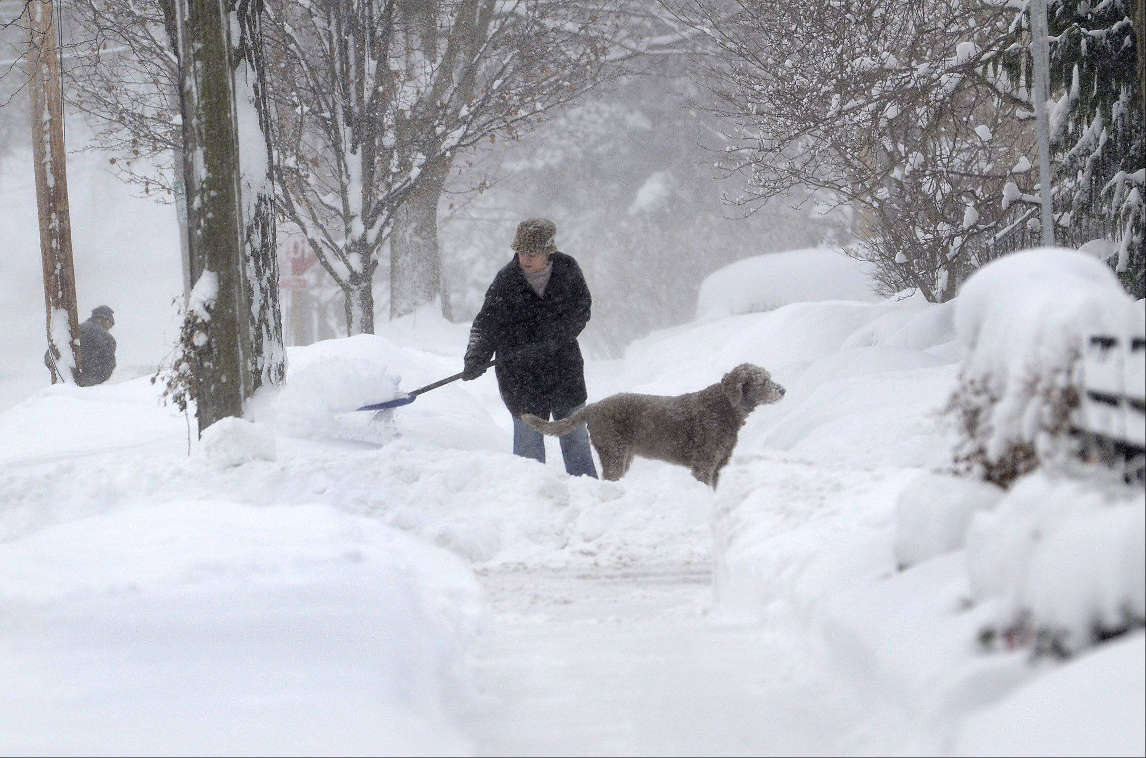 "Michelle Kottke of South Cook Street in downtown Barrington shovels snow with the help of her dog Harlee. ""I'm shoveling by hand, the old fashioned way,"" Kottke says. ""This is the sixth time in 24 hours that I've shoveled."""