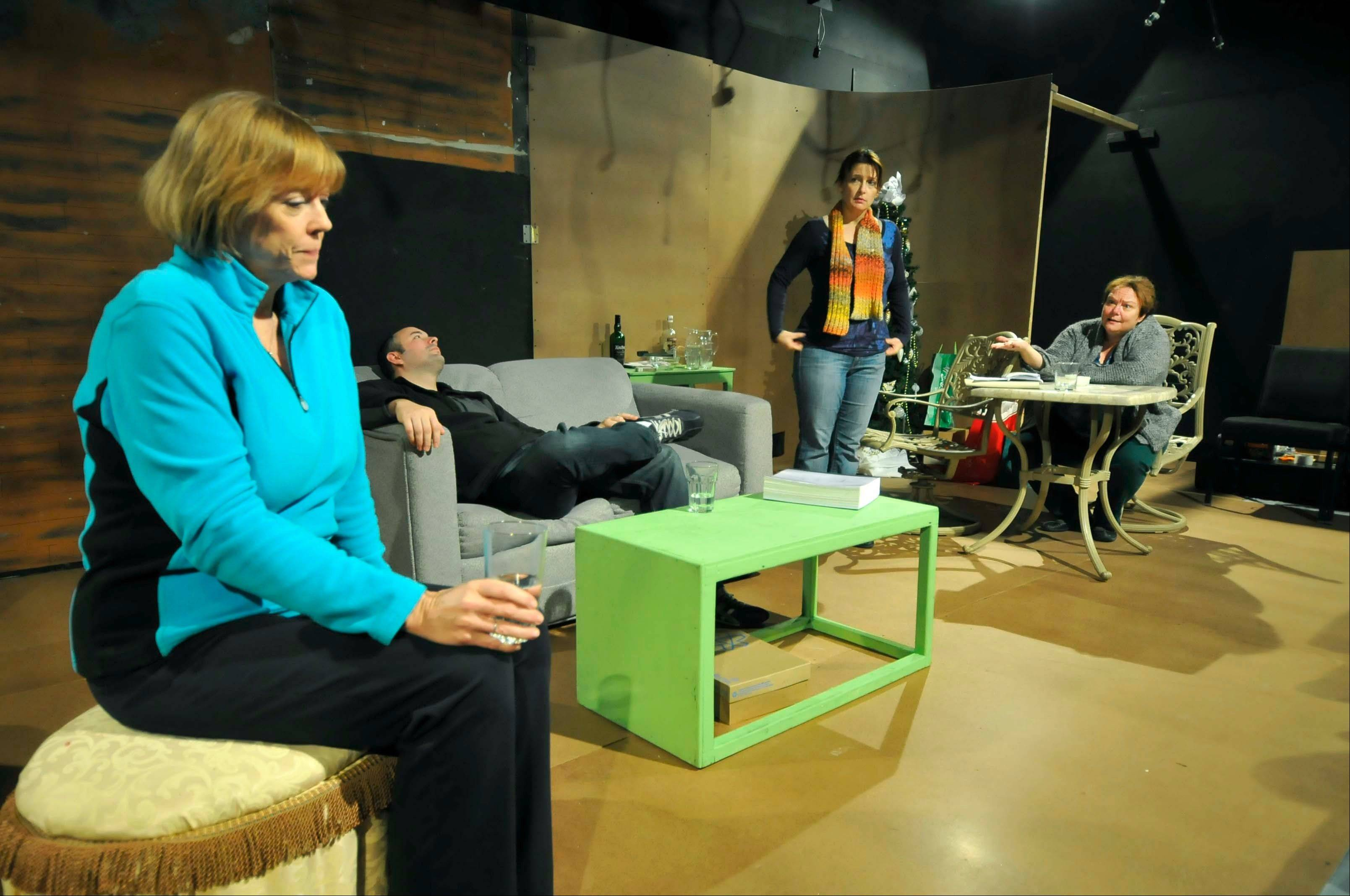 """Other Desert Cities,"" a Pulitzer Prize-nominated play about family dynamics, takes center stage beginning Jan. 17 in Glen Ellyn."
