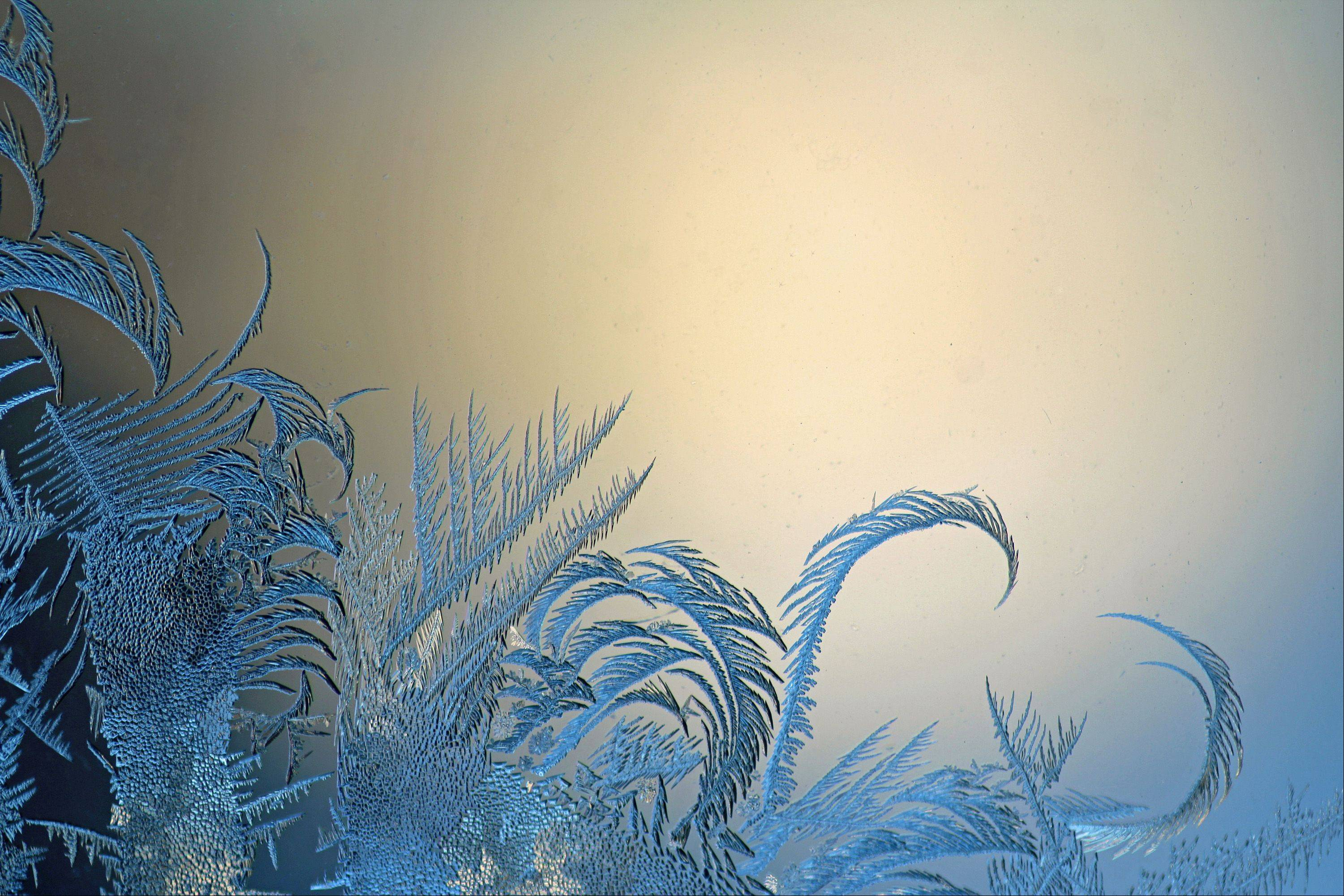 I used a macro lens to capture the frost on a window. The sunset provided a warm light that complemented the cool tones of the feather-like frost. Two of the frost feathers curl toward one another, almost in the shape of a heart.