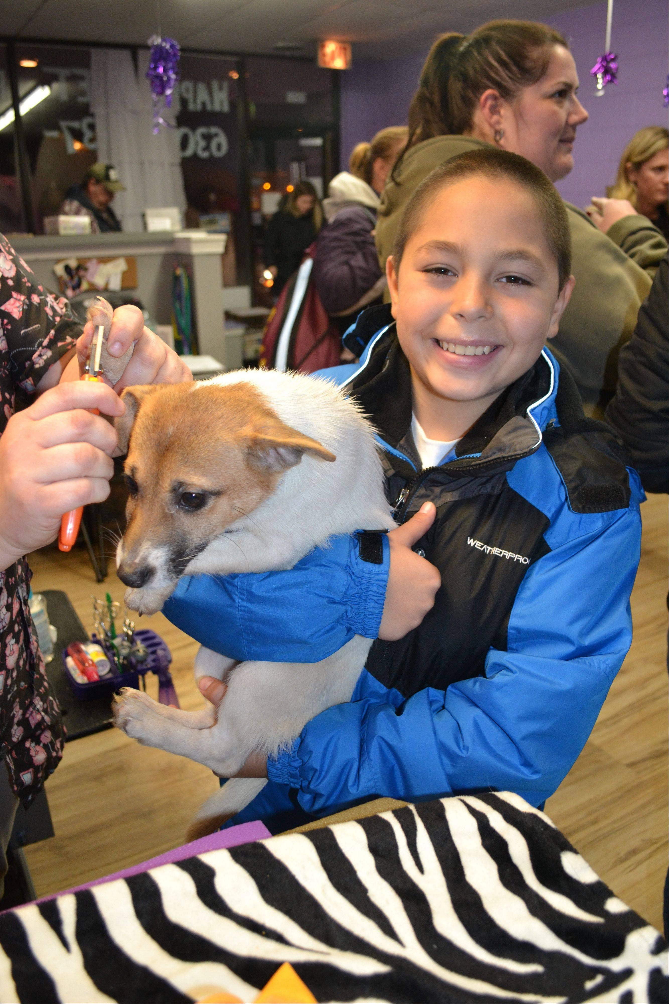 Ricky Chevarria, 11, who came to Happy Pet Parlor, a dog grooming business in Elk Grove Village, to help with the rescue pups, is holding Kewi while Jolie McGrath cuts her nails.
