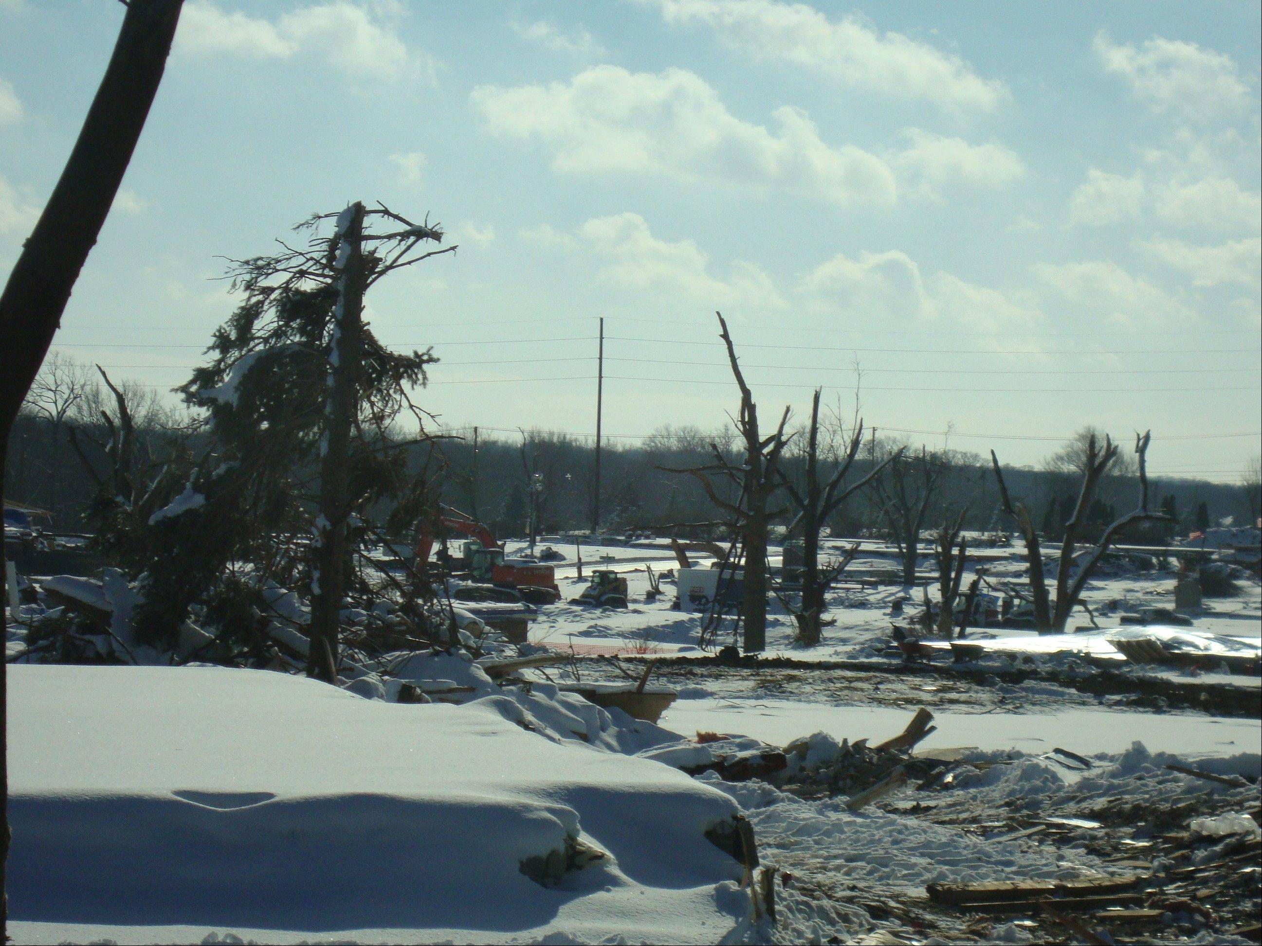 This photo shows tree damage in Washington, Ill., as it appeared on Dec. 18.