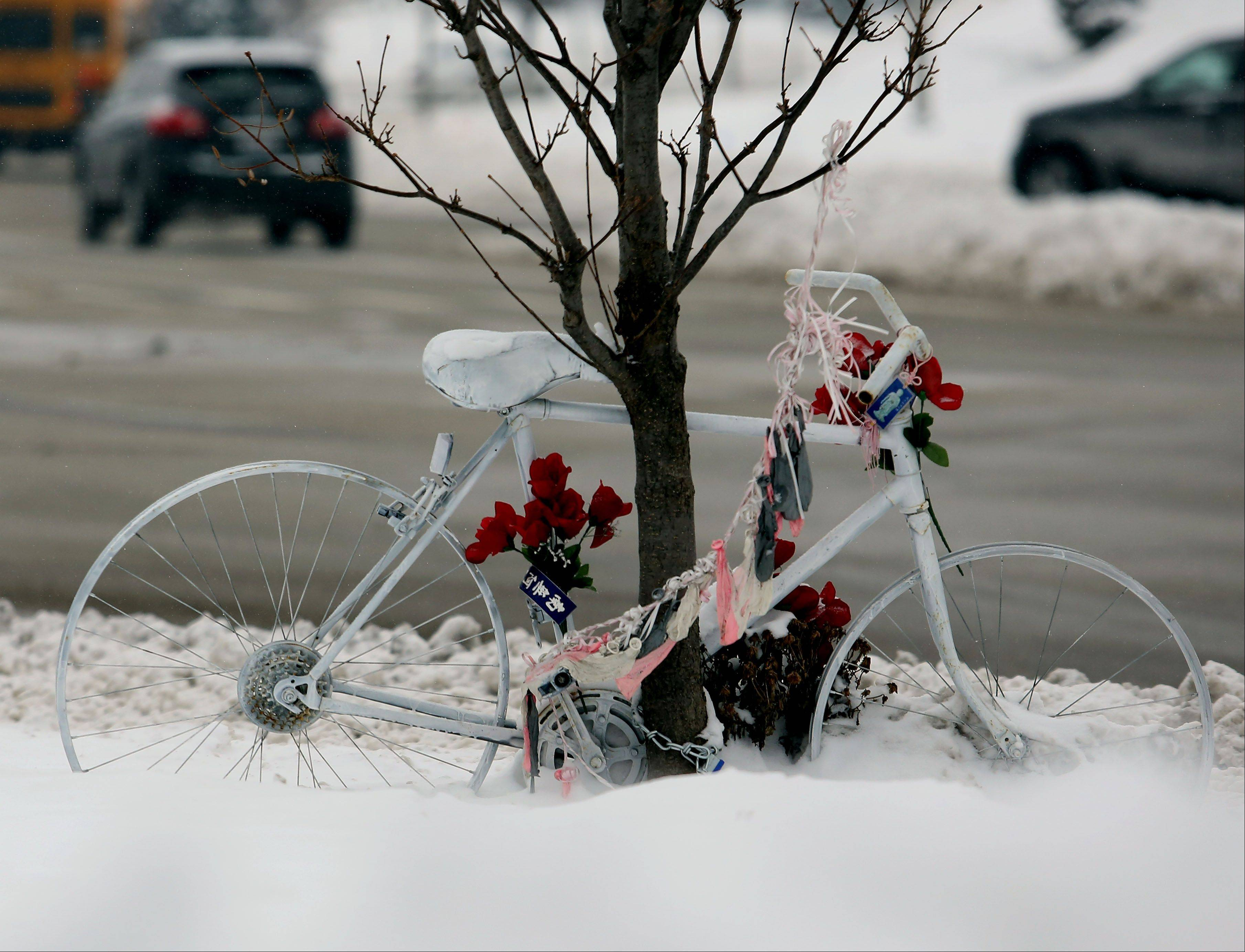 "A so-called ""Ghost Bike"" has been placed along Diehl Road near Freedom Drive in honor of a 56-year-old Naperville woman who was struck and killed in September while riding her bicycle in that area."