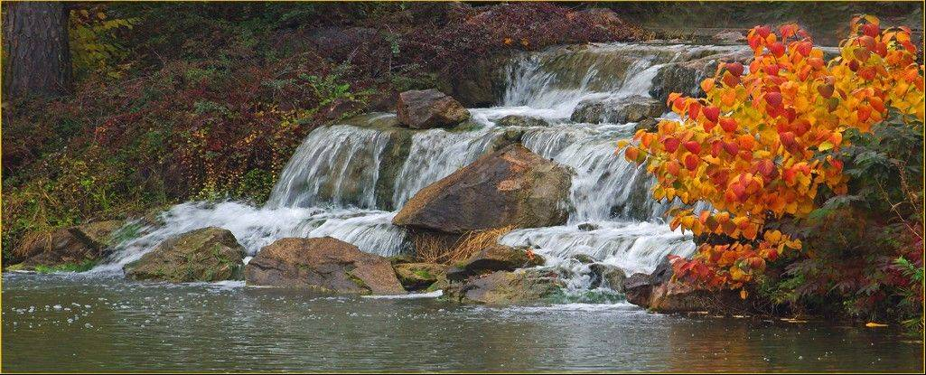 "Print of the Month, January, was awarded to John Peterson for ""Cascading Waterfall."""