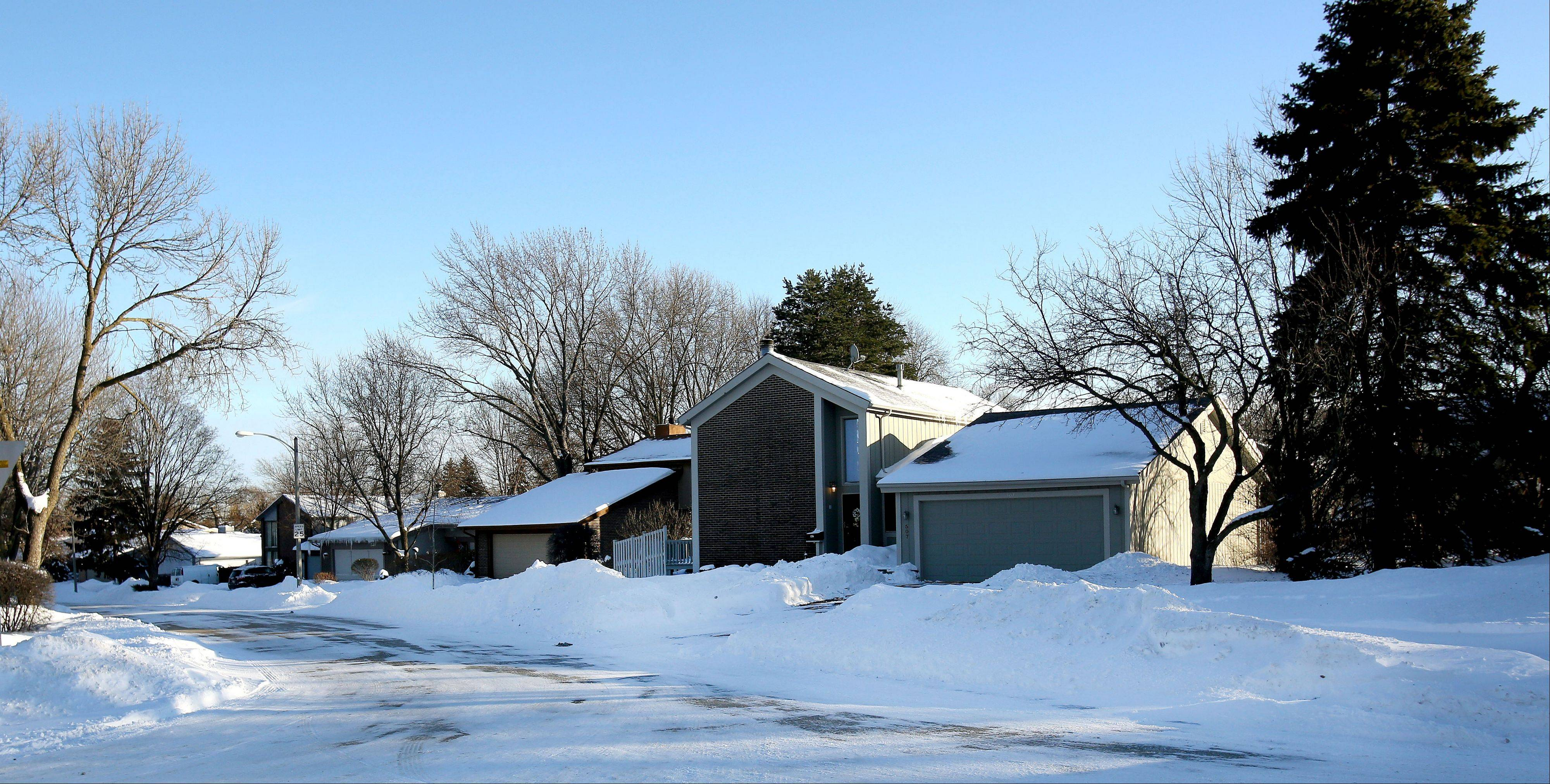 Glacier Trail, a street in Roselle's Trails neighborhood, seems appropriately named after this winter's recent snowfall.
