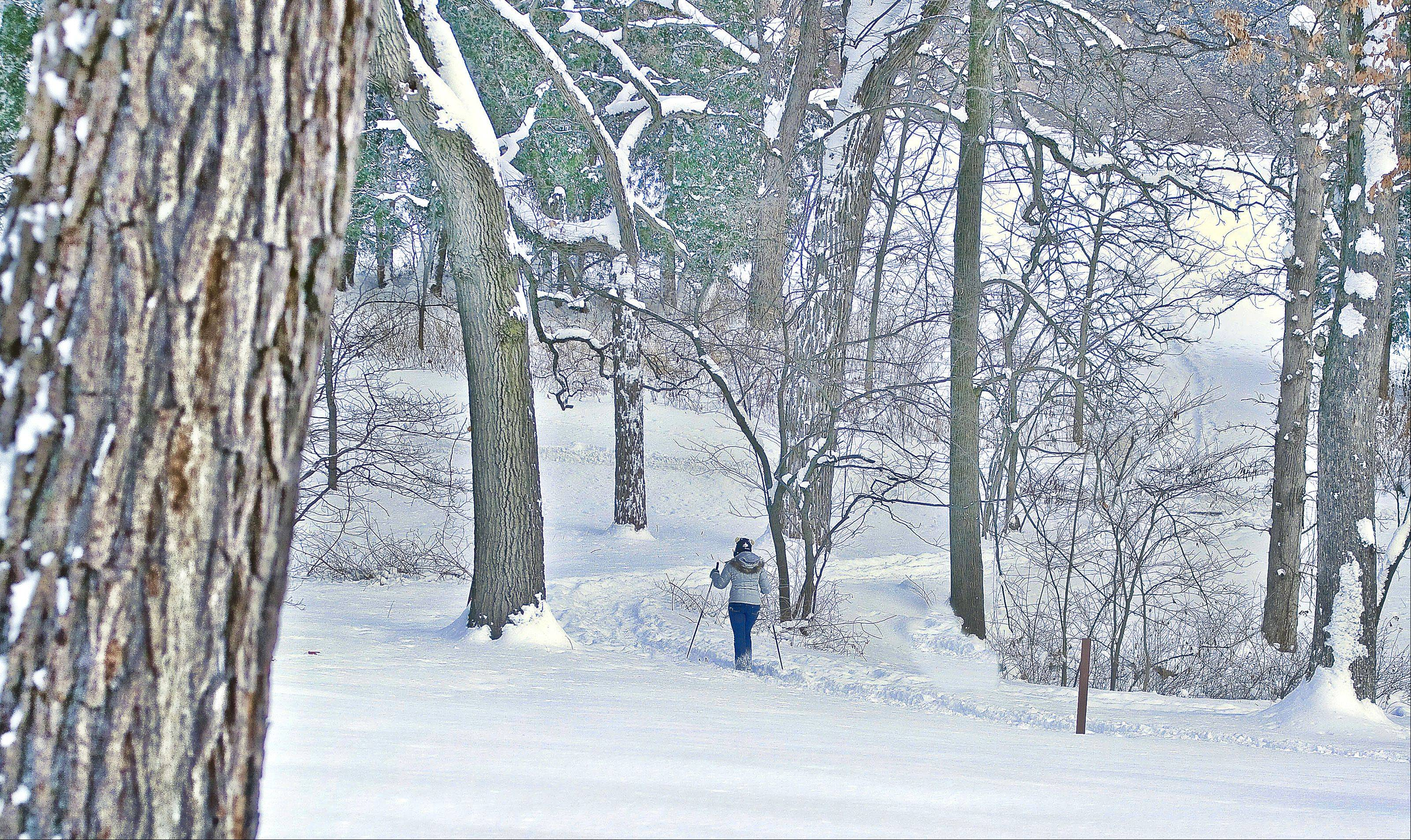 Don't let the snow scare you from enjoying the outside. I took this of my daughter cross country skiing at the Morton Arboretum.