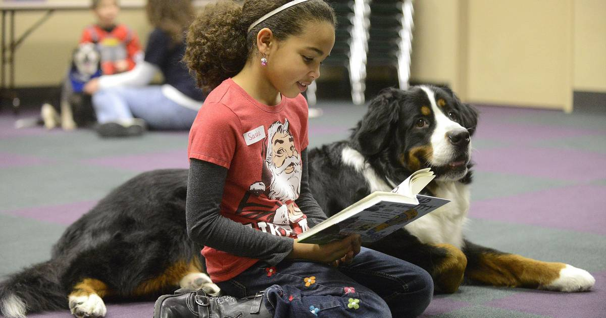 dogs read