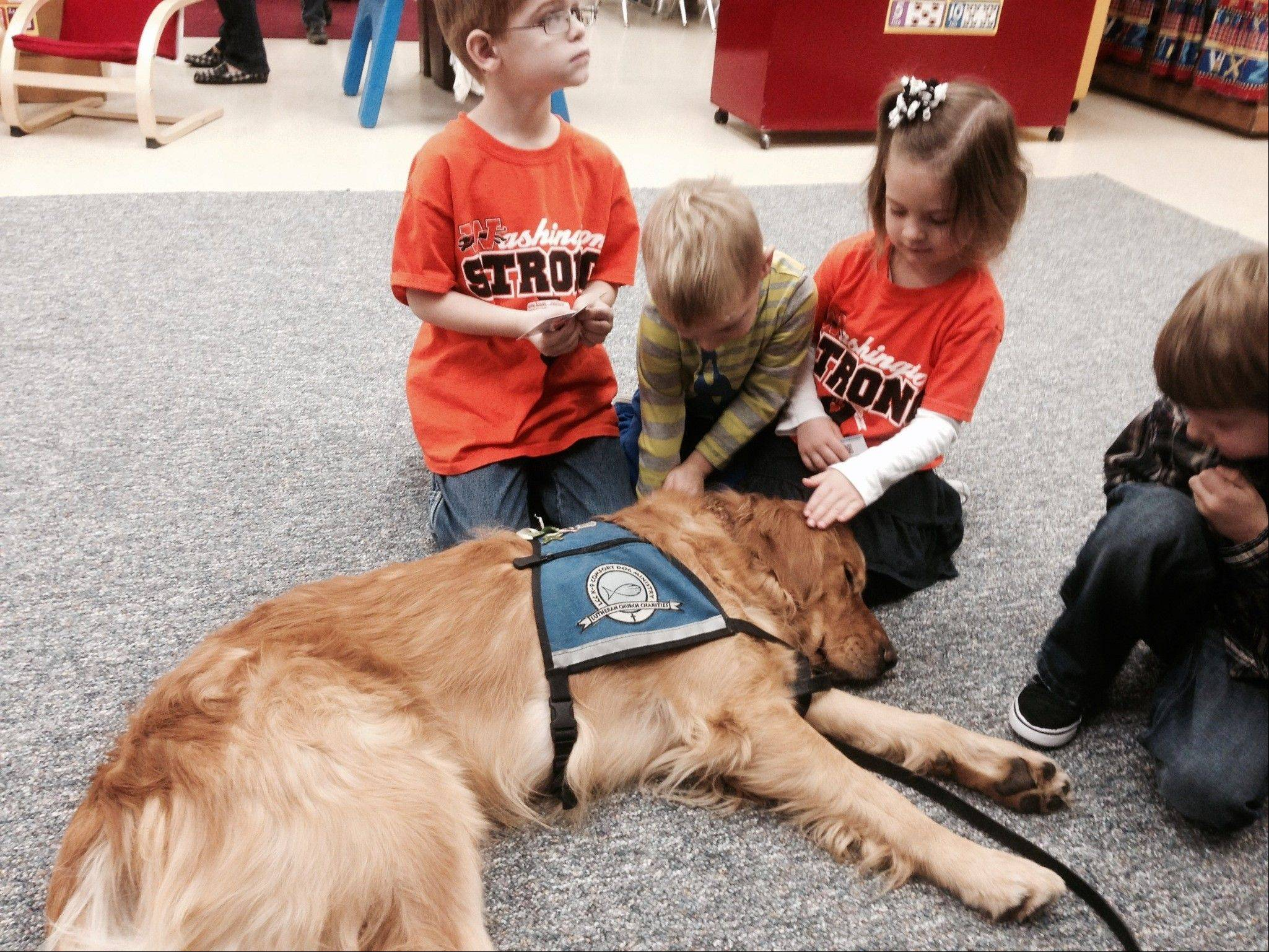 "Comfort Dogs have responded to tornado-ravaged Washington, Ill. ""Our ministry is a ministry of presence,"" says Rich Martin. ""We're just there with people in time of need."""