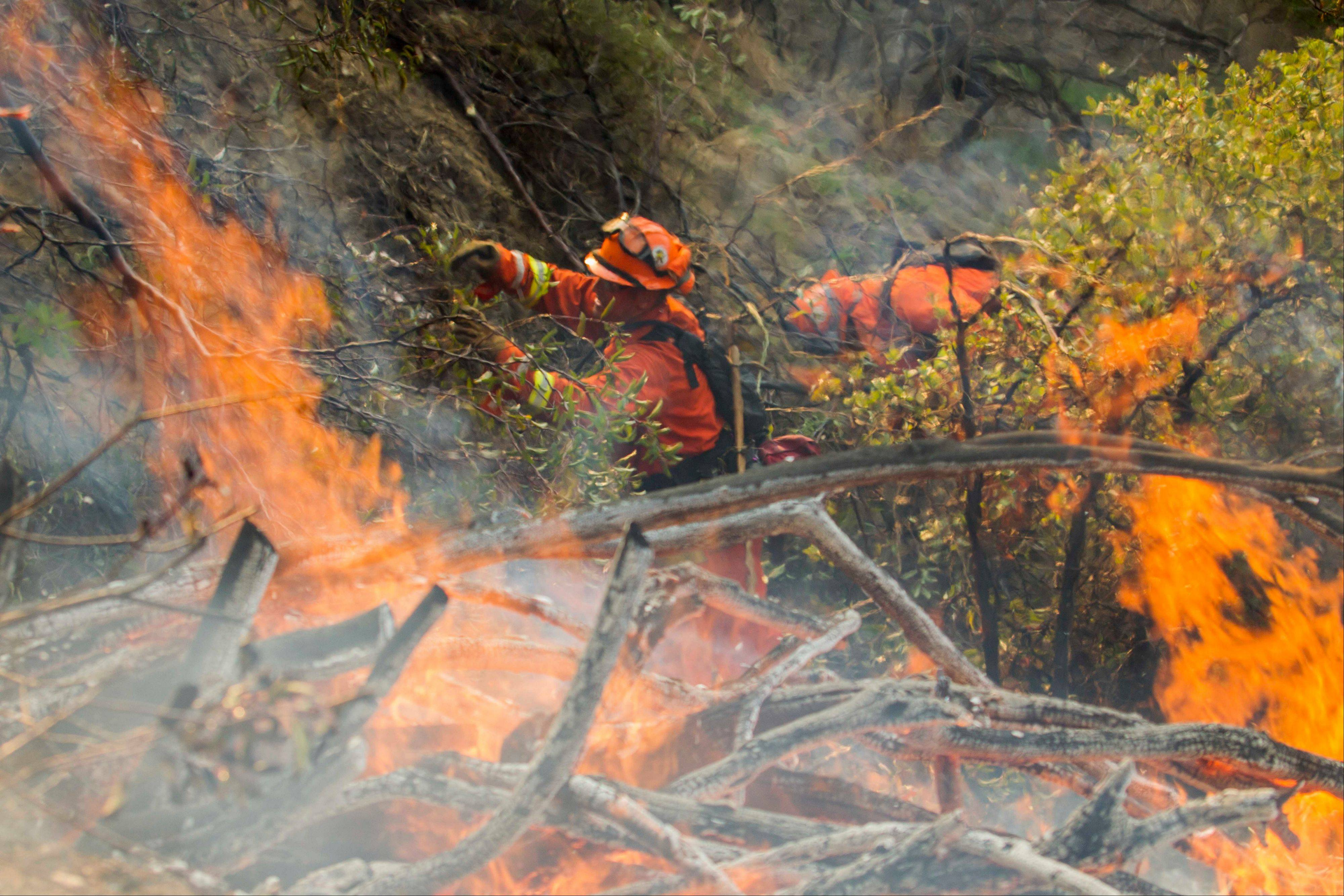 A fire crew works on a fire line as a wildfire burns just north of the San Gabriel Valley community of Glendora, Calif., Thursday. Southern California authorities have ordered the evacuation of homes at the edge of a fast-moving wildfire burning in the dangerously dry foothills of the San Gabriel Mountains.