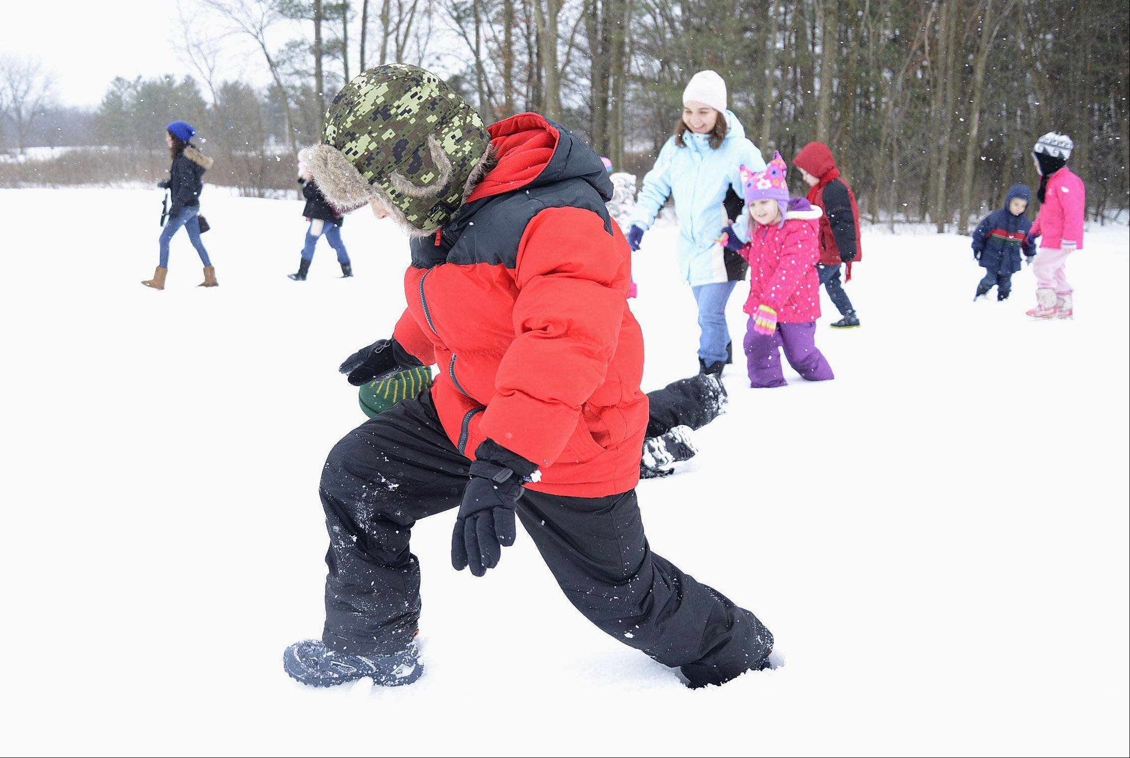 "John Olgan, 7, of Warrenville, breaks through a hard crust of snow, a type of snow students learned about Thursday during the program, ""Homeschool Explorations: The Science of Snow"" led by Kane County Forest Preserve naturalist Josh Libman at LeRoy Oakes Forest Preserve in St. Charles."