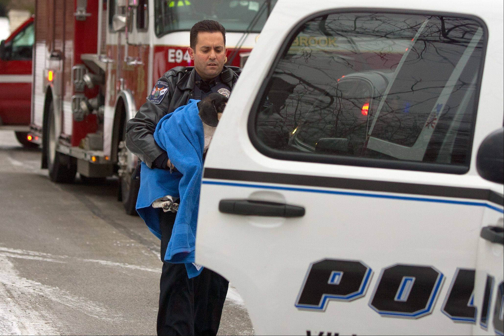 A police officer carries a dog to his vehicle at the house on Oak Brook Hills Road in Oak Brook where a carbon monoxide leak caused one death and left seven others ill.