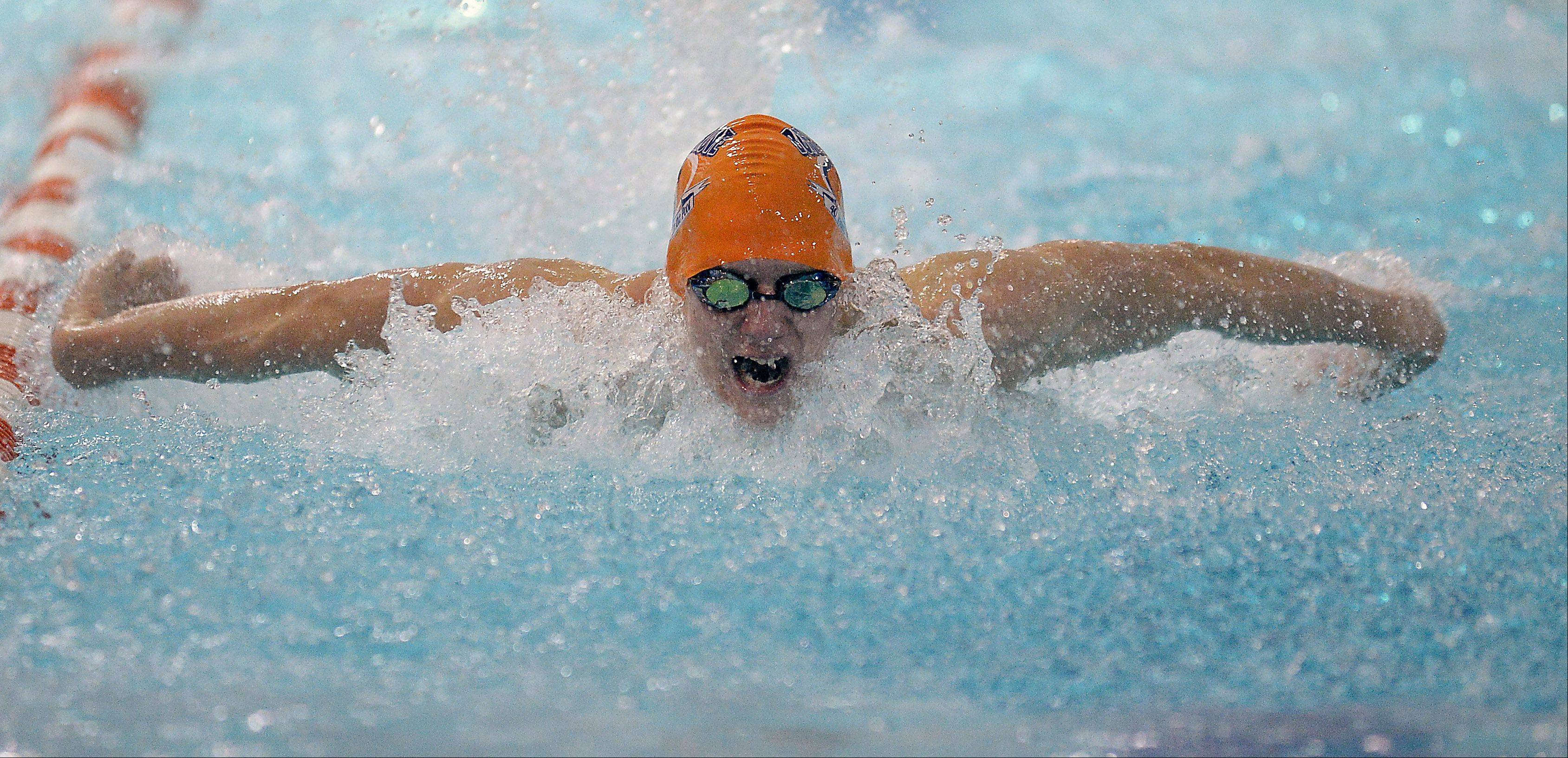 Buffalo Grove's Brandon Hausfeld claims victory in the 100-yard butterfly against Hersey on Thursday.