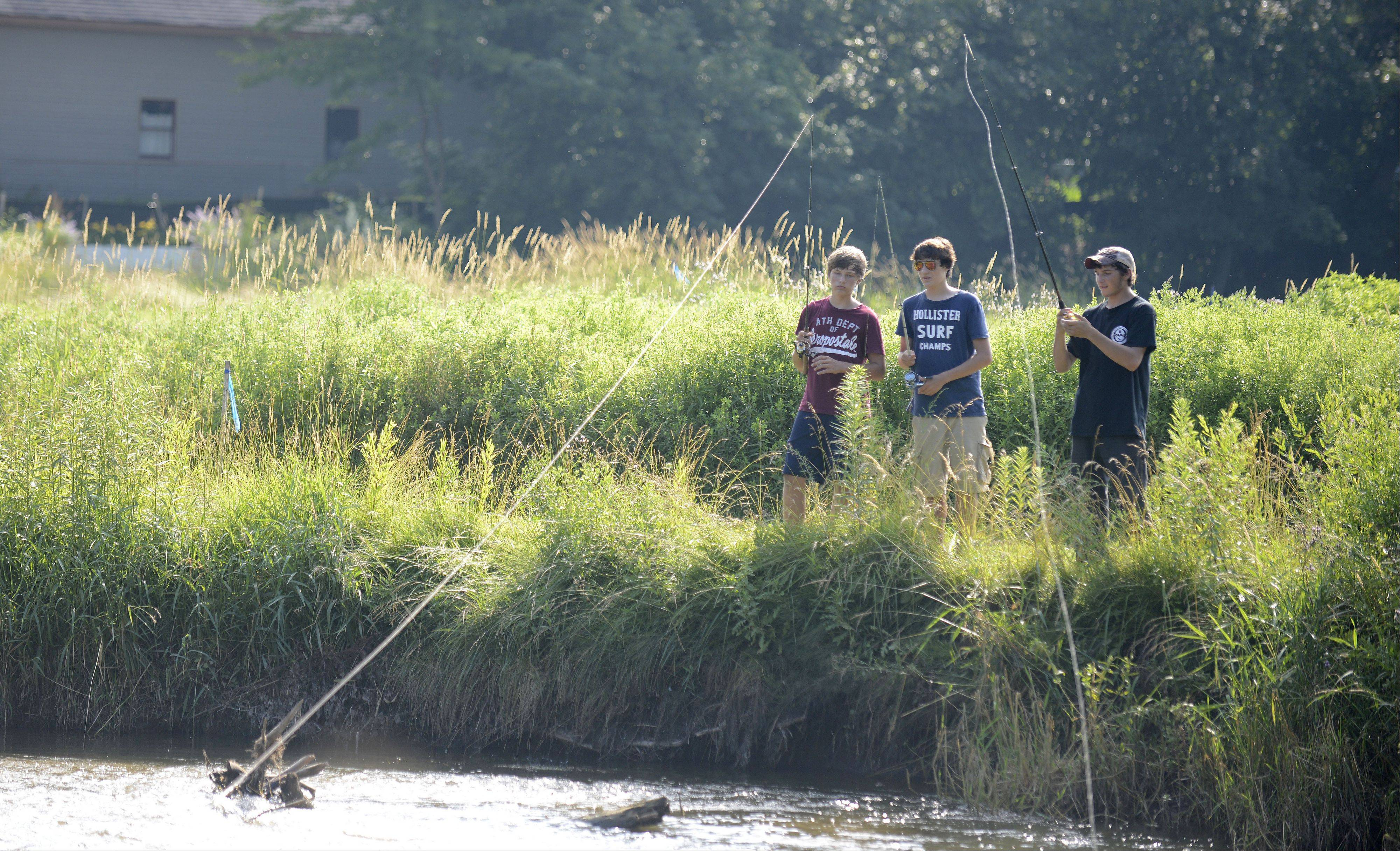 Algonquin residents give the village high marks for being a good place to live and raise a family. Scott Nory, Jacob Halper and Eric Longo spend a warm July day last year fishing in a creek near Towne Park.