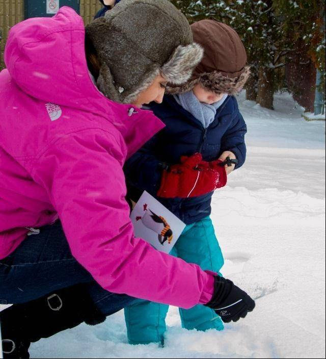 Come join the Schaumburg Park District on Feb. 1 to hunt for polar bears and penguins and enjoy games, crafts and pancakes at Bock Neighborhood Center.