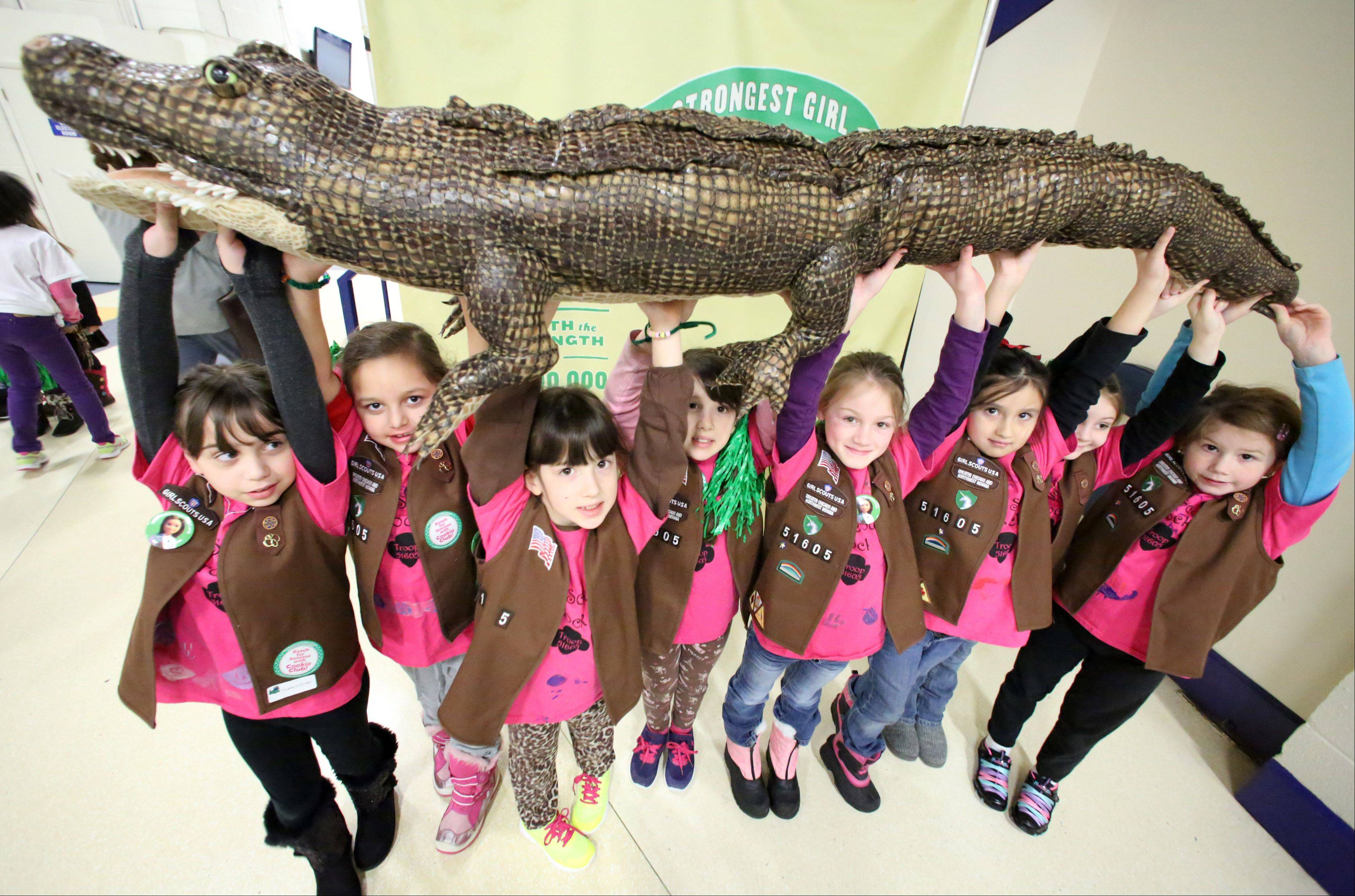 Girl Scouts with troop 51605, in Glendale Heights, hold up a manmade alligator at the fifth annual Girl Scouts Cookie Kickoff Rally held at Allstate Arena on Saturday in Rosemont. The alligator has been a part of the rally for several years and is used to show the strength of the girls.