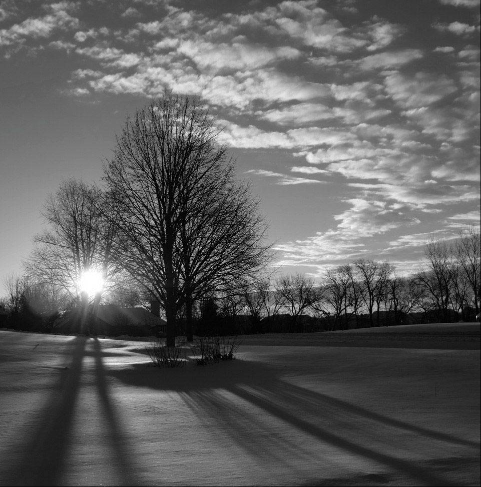 This photo was taken one morning with below zero temperatures. I love the sky and shadows